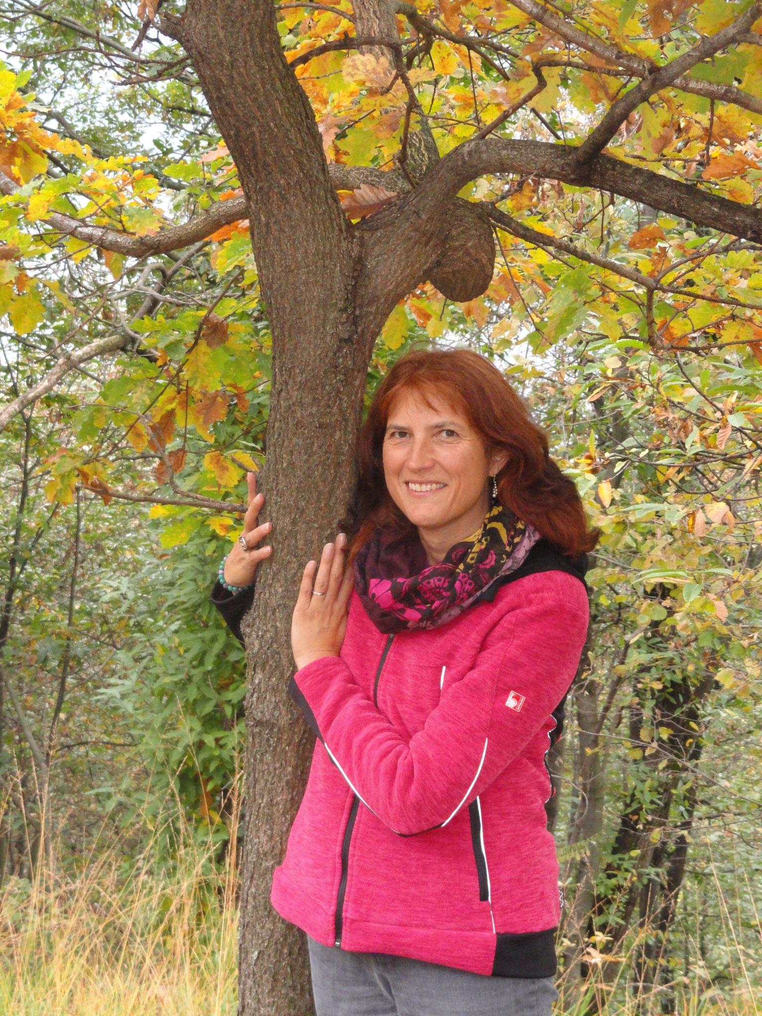 Ich liebe die Natur, speziell die Bäume