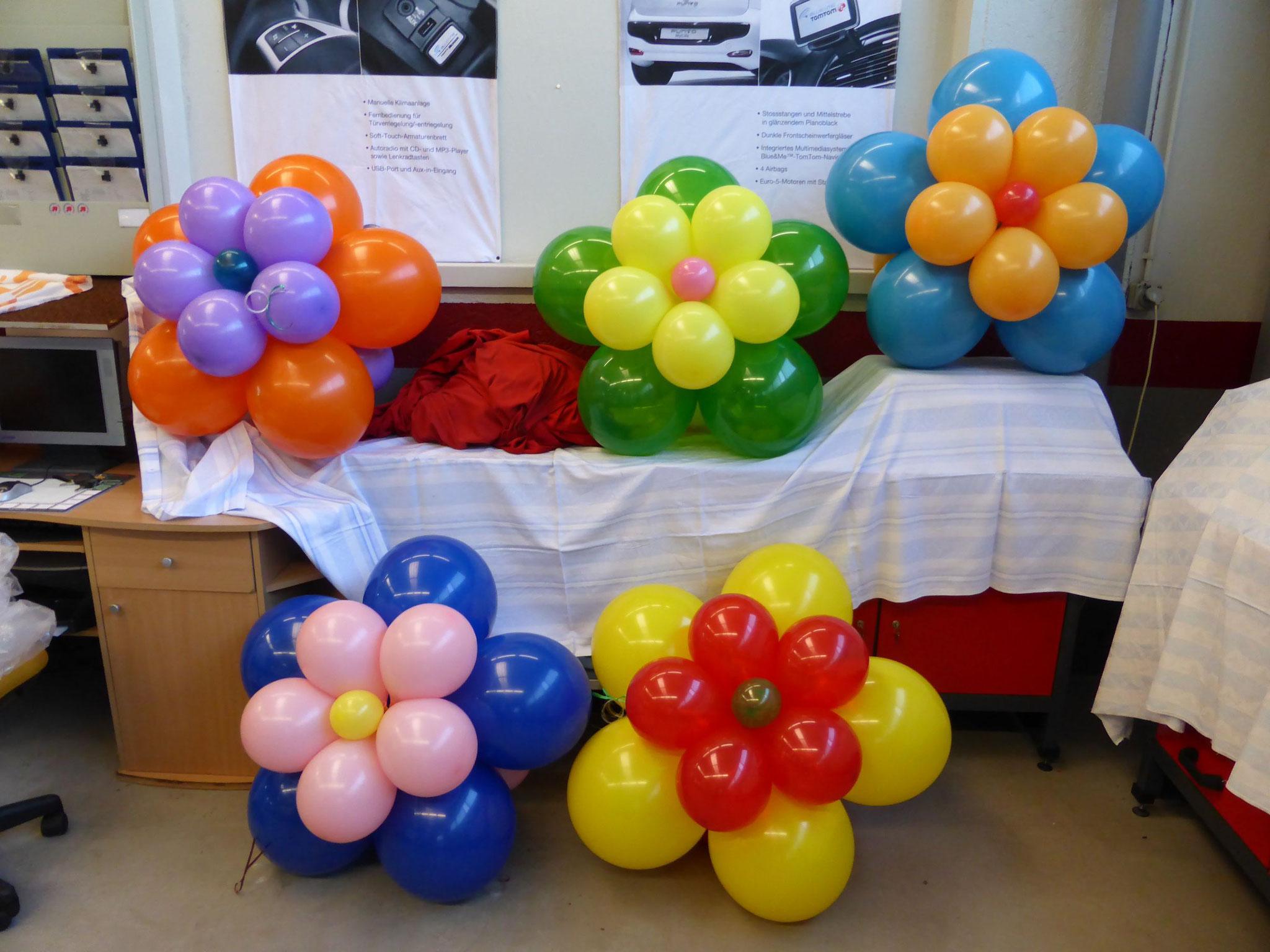 Ballonblumen
