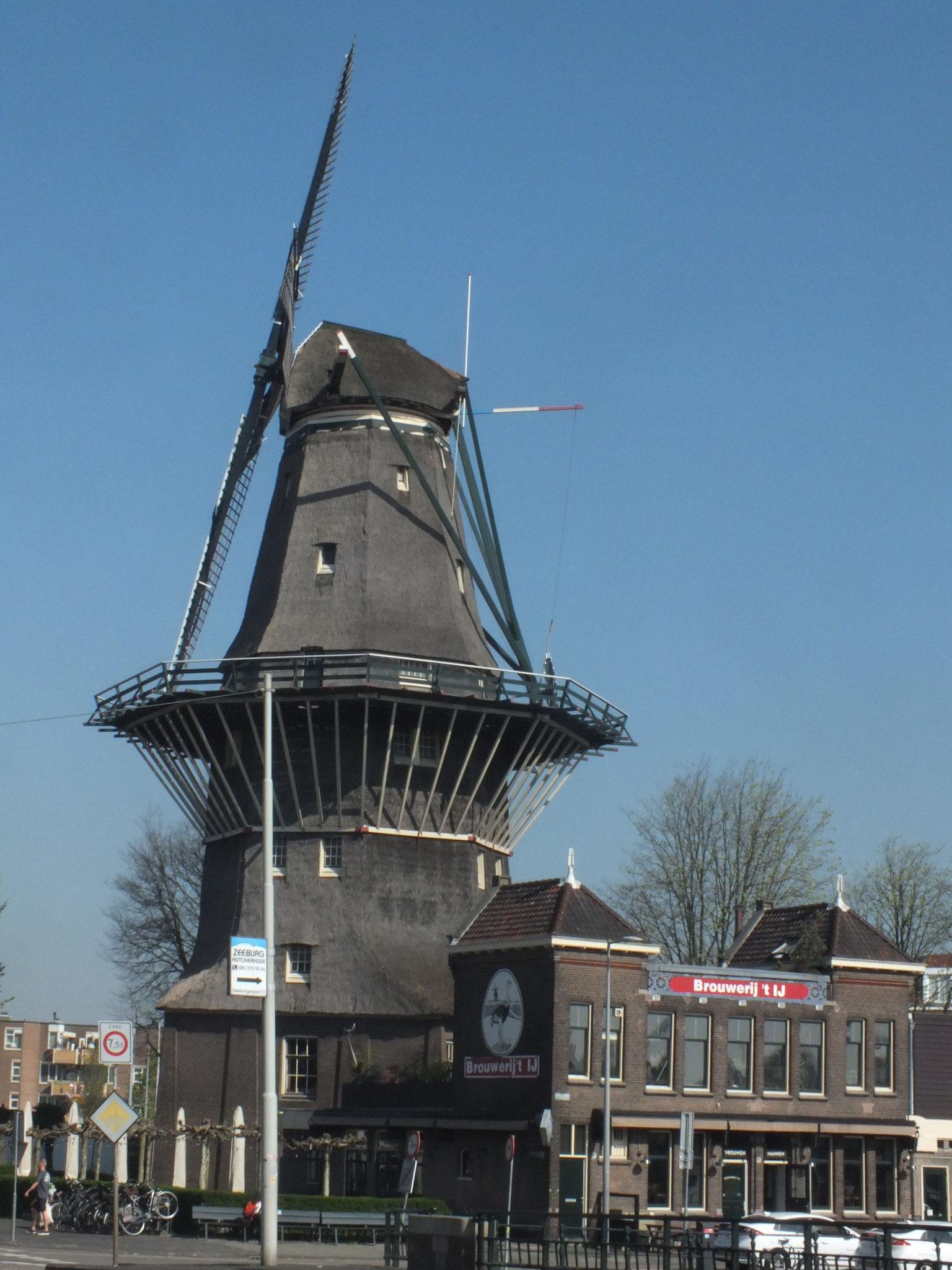 Windmühle am Nieuwe Vaart