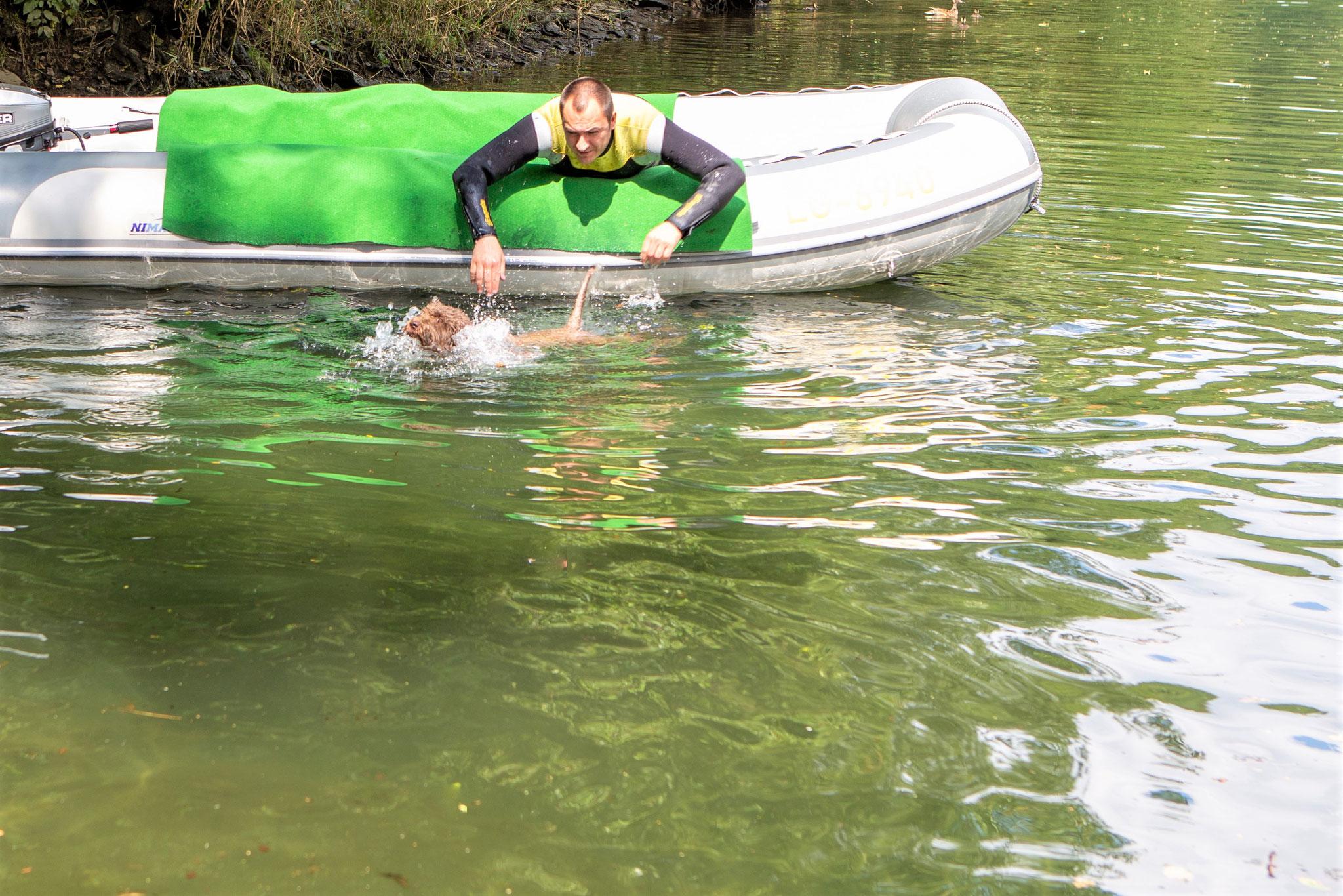 Sie wird vorsichtig ins Wasser gesetzt