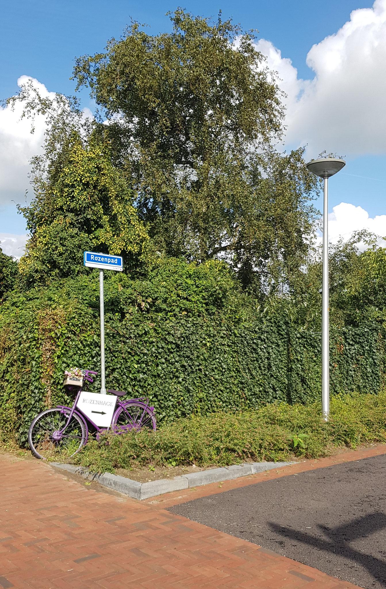 Rozenpad 3, Zwolle