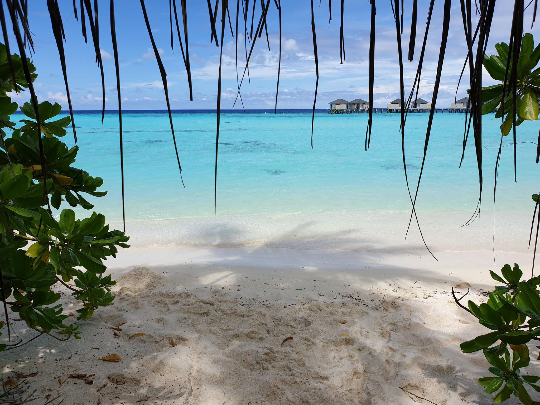 Amari Havodda Malediven