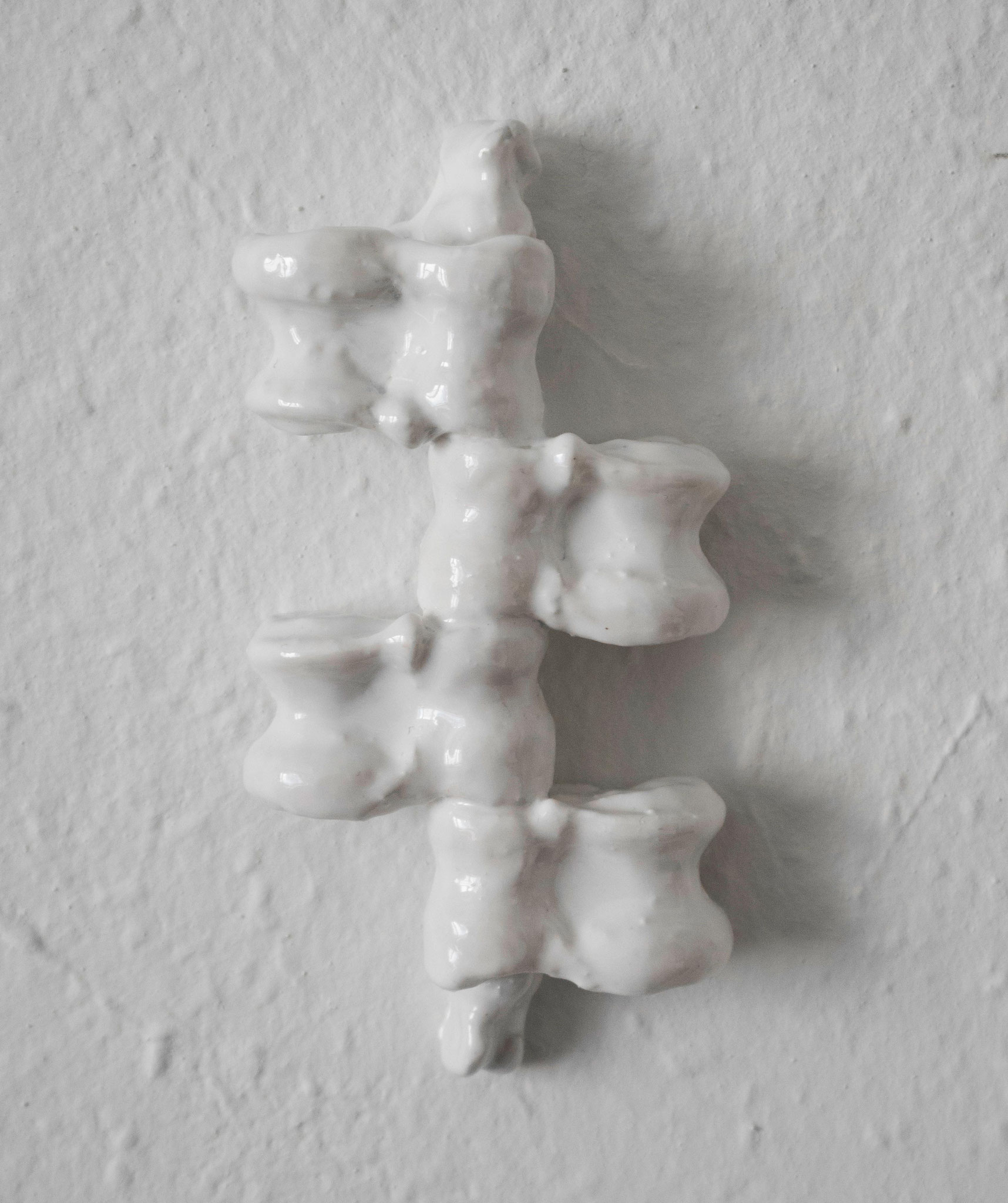 Verzahnung, 2015, bones coated with epoxy resin, 8,5x17x3cm