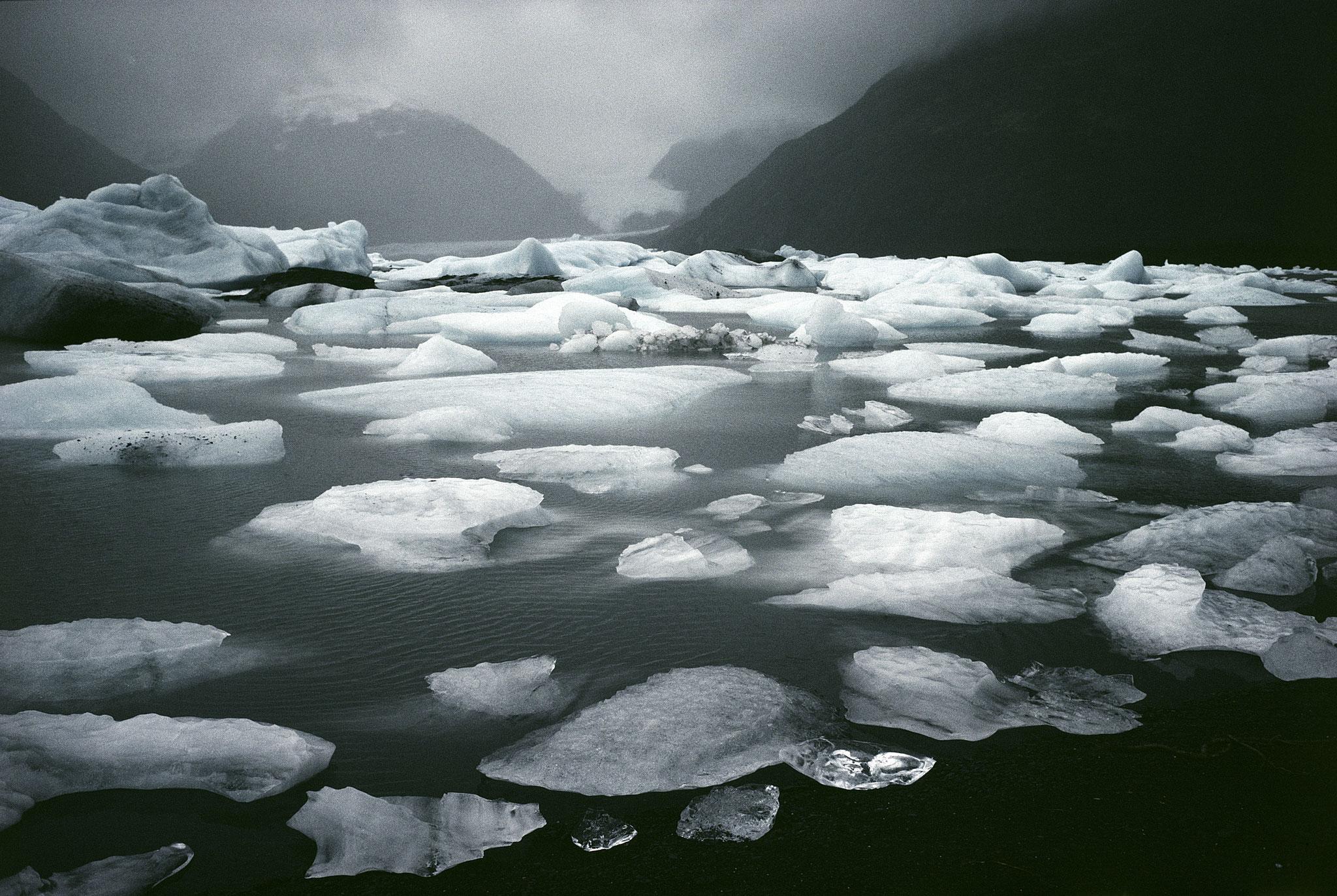 Environnement photo Hans Silvester