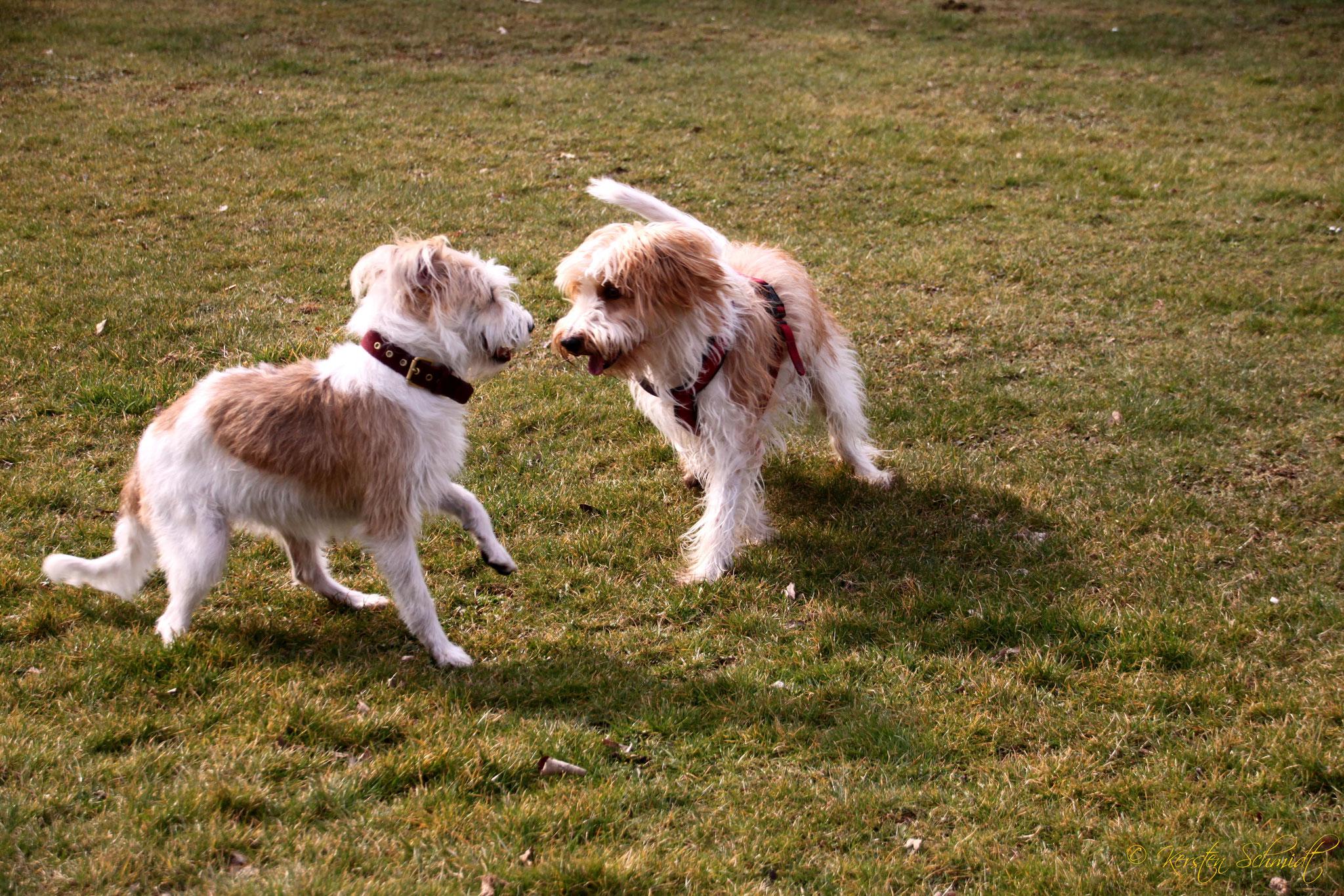 Cataleya & Benny