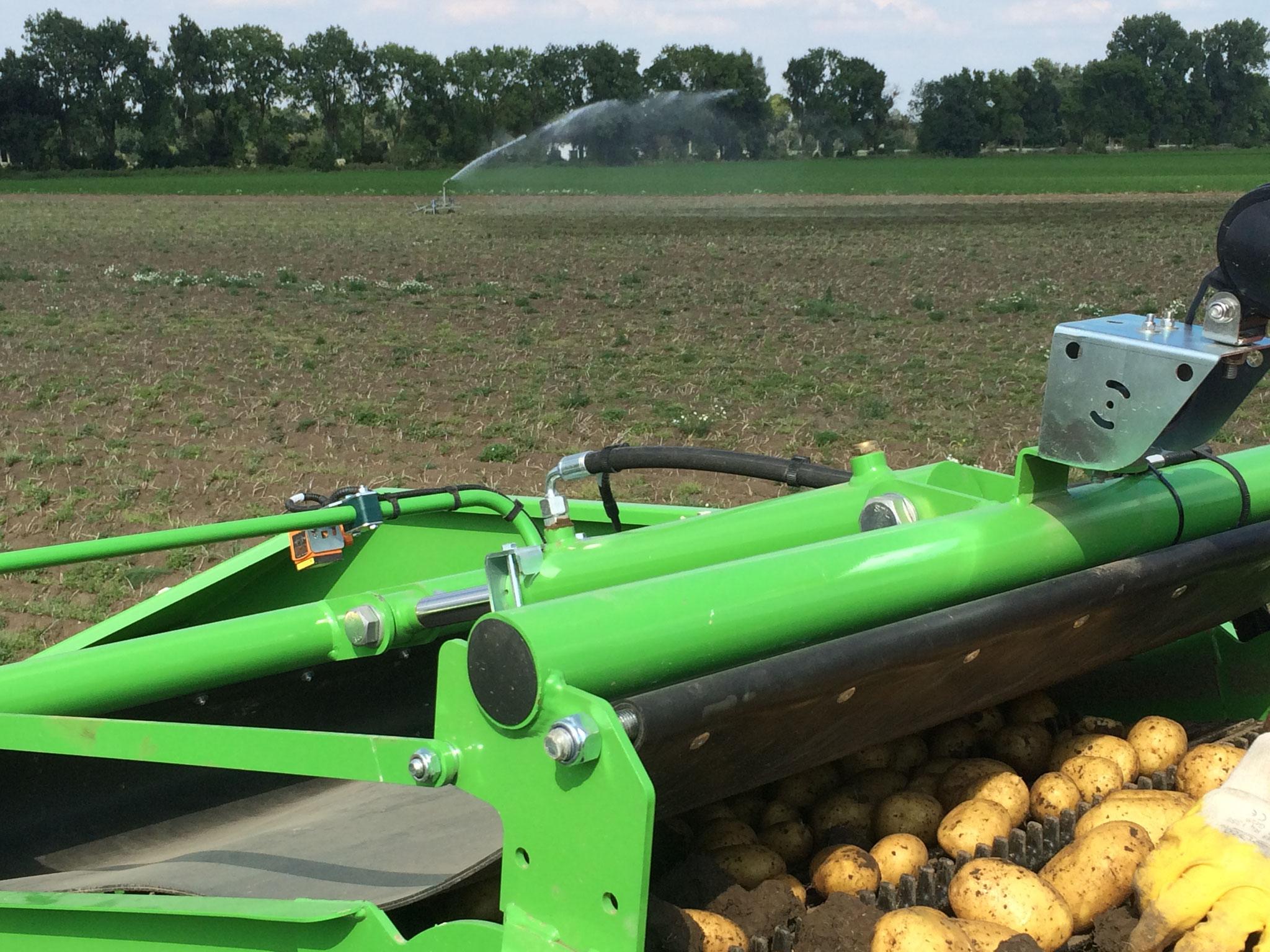 2016 mussten die Kartoffeln nach einer langen Trockenperiode vor der Ernte beregnet werden um Schäden an den Kartoffeln zu vermeiden.