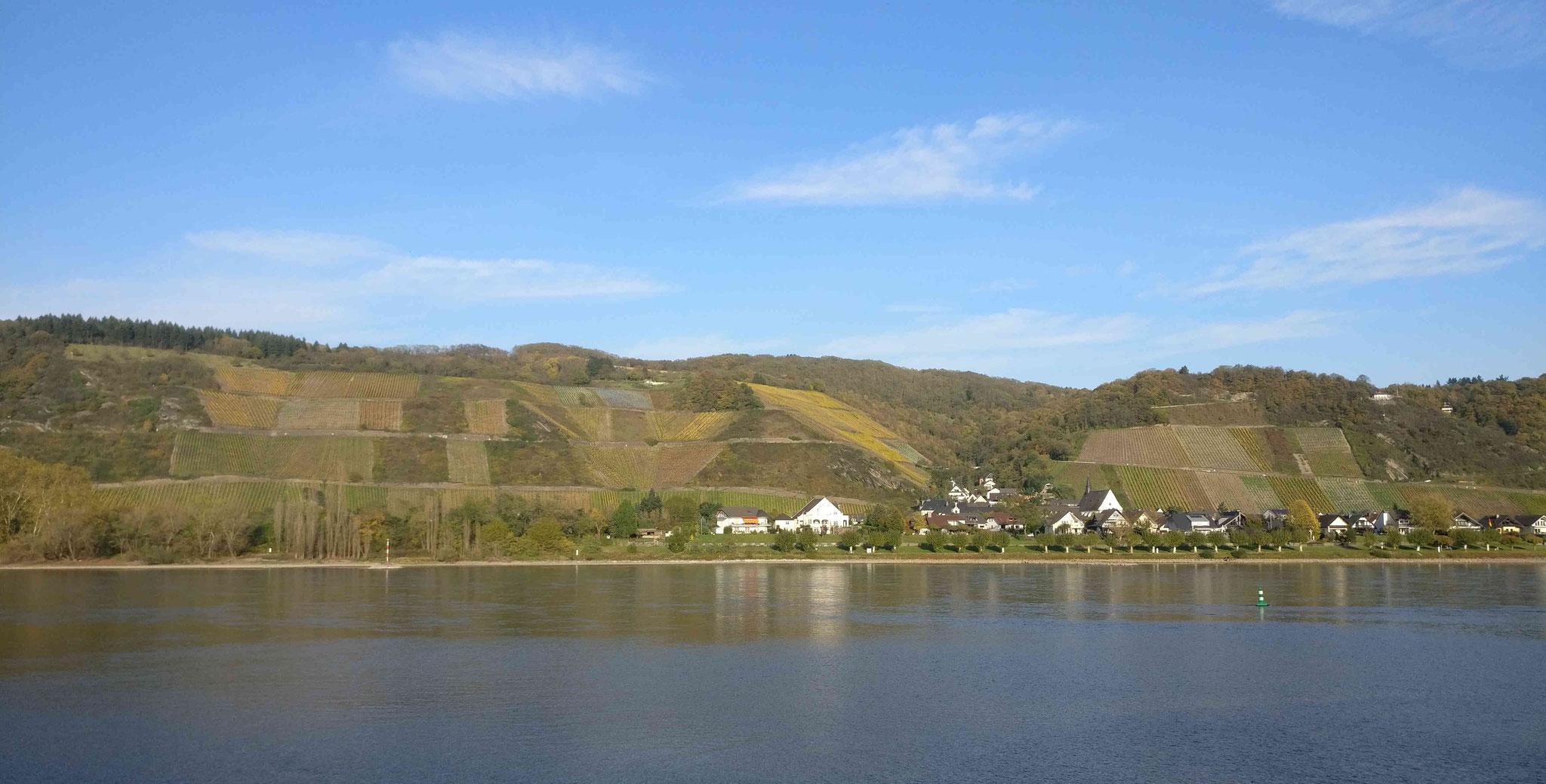 Blick auf die Leutesdorfer Weinberge von der westlichen Rheinseite