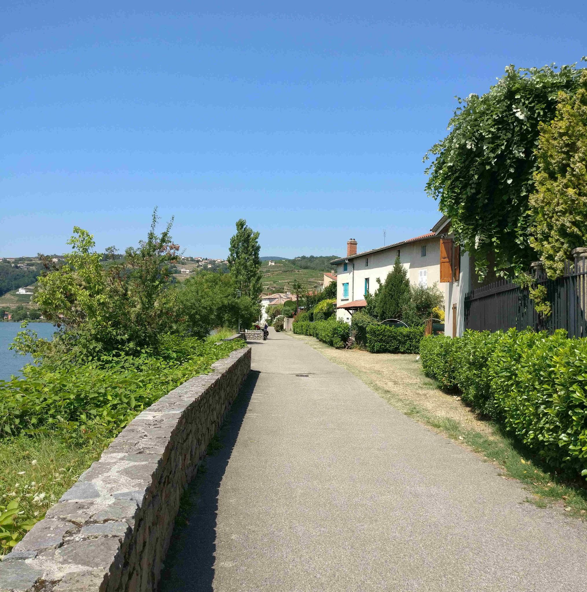 Fahrradweg ViaRhona in Condrieu