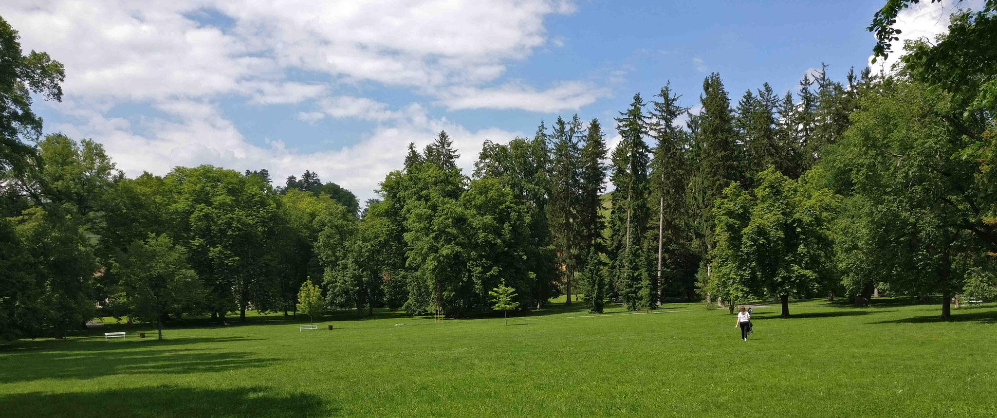 Mestni-Park