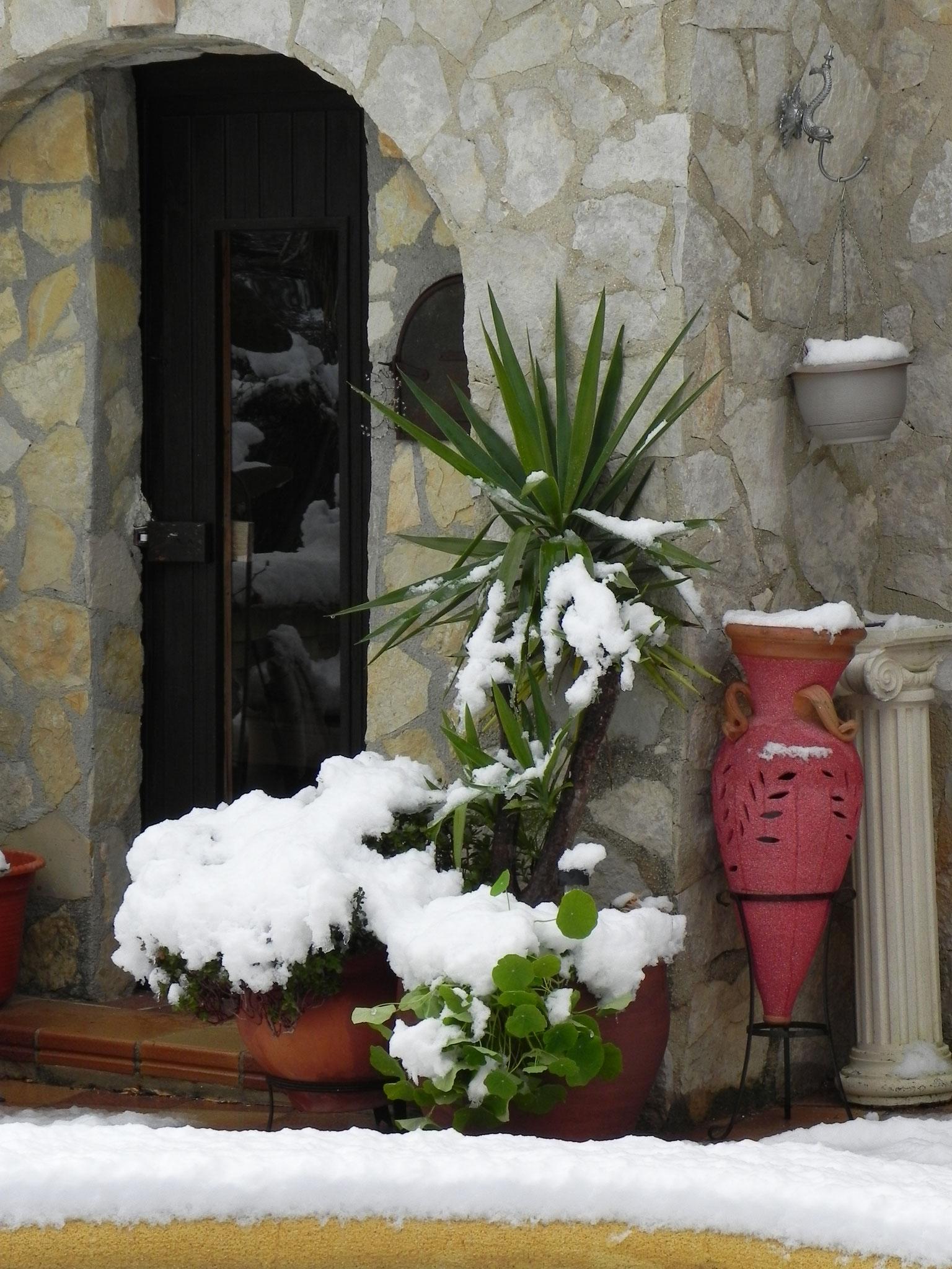 Winterliche Impressionen im Eldorado Denia