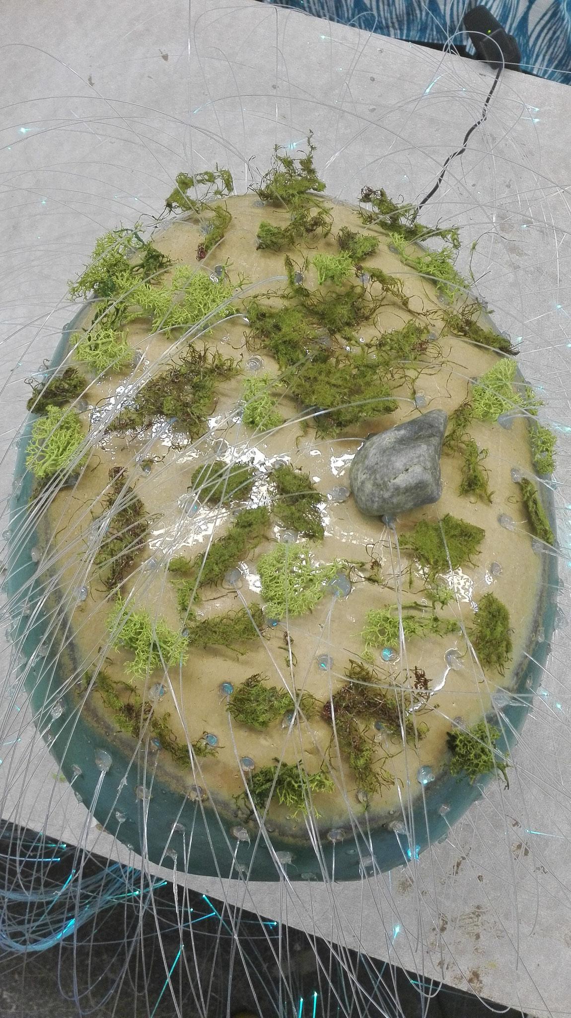 vivere Protozoa [begrünter Einzeller] | [planted protozoa] © 2017 created by Juliane Leitner