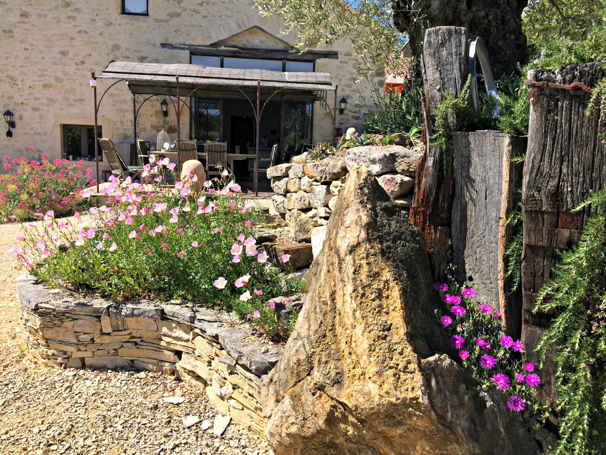 Décoration de pierres, de poutres et d'un olivier tricentenaire