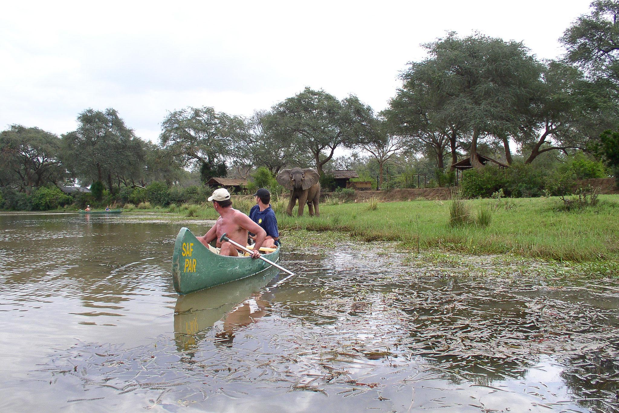 Pirschaktivitäten zu Boot