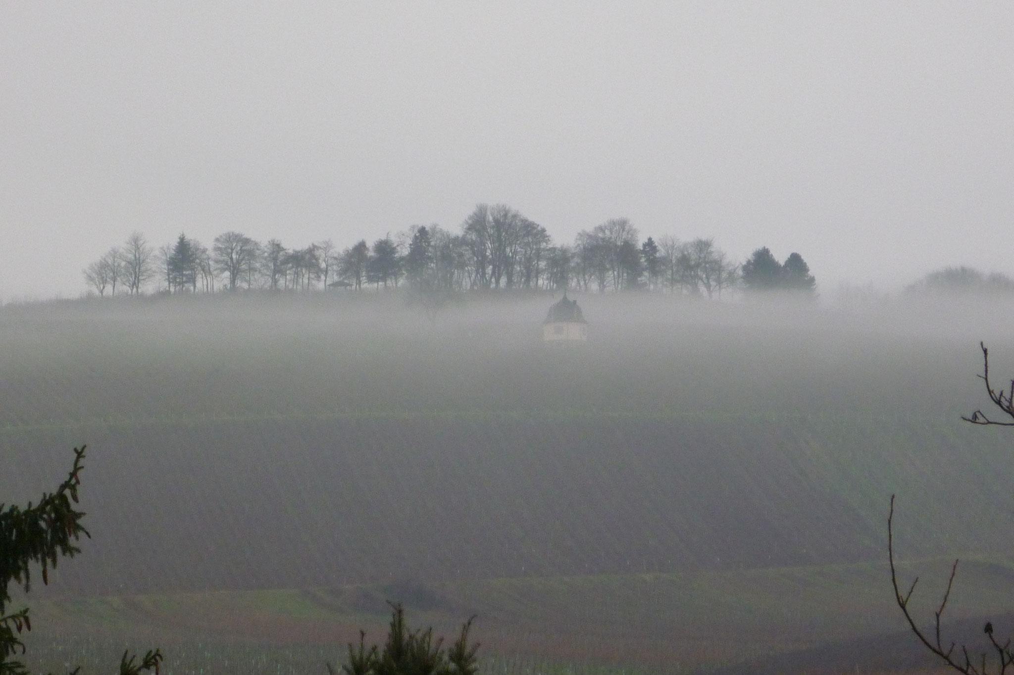 Die Bubenhäuser Höhe im Nebel