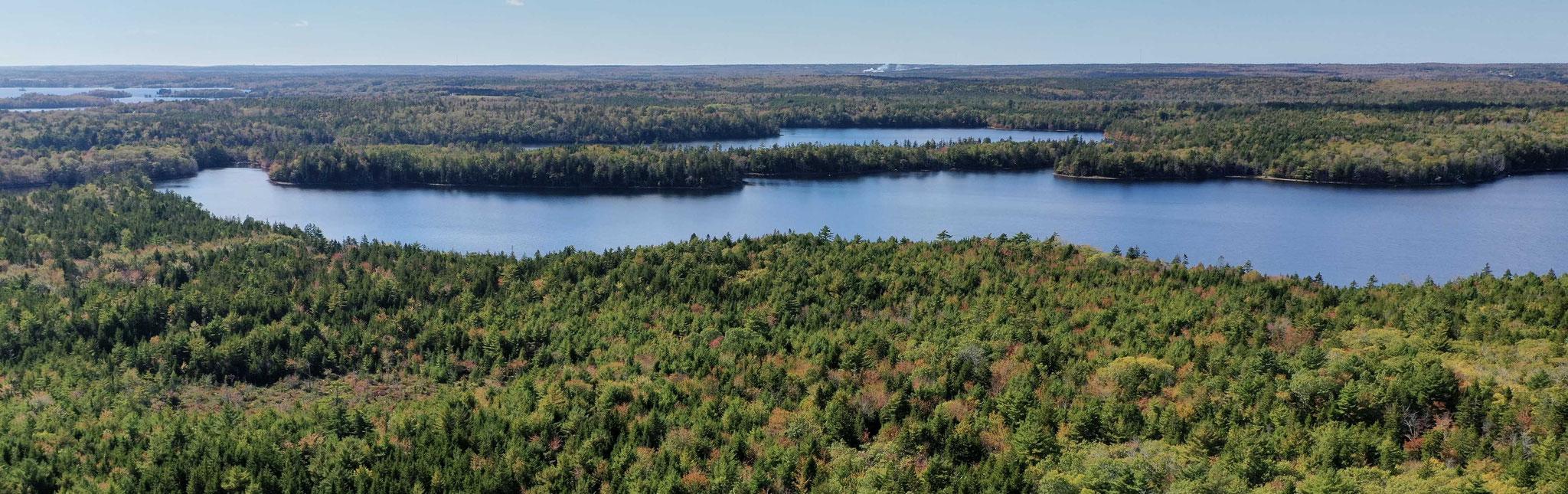 title:Yarmouth Forest,title2:Wald mit Ufer,provinz:Nova Scotia,bezirk:Yarmouth,art:Mischwald,flaeche:537 ha,ufer:2.300 Meter,preis:auf Anfrage