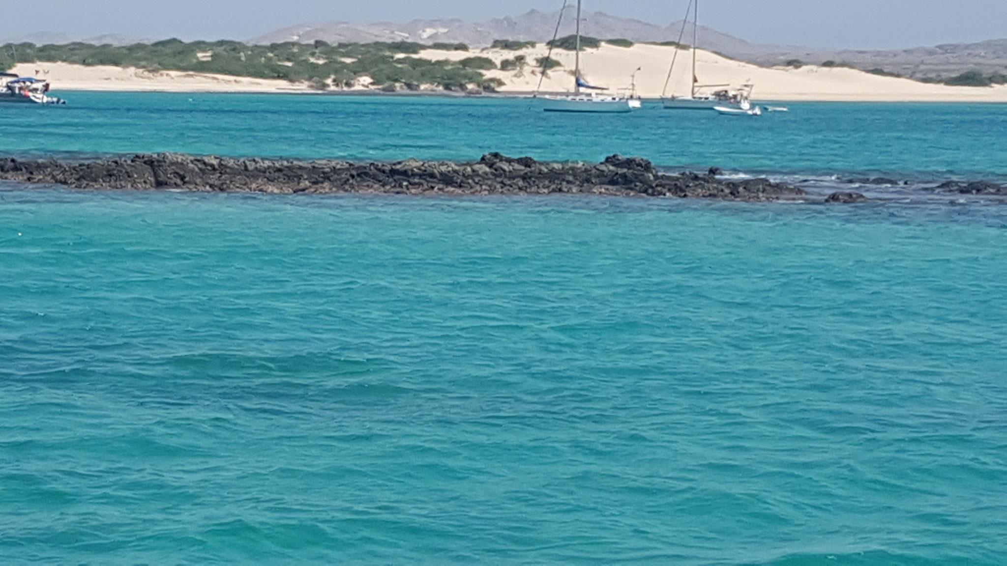 snorkel reef