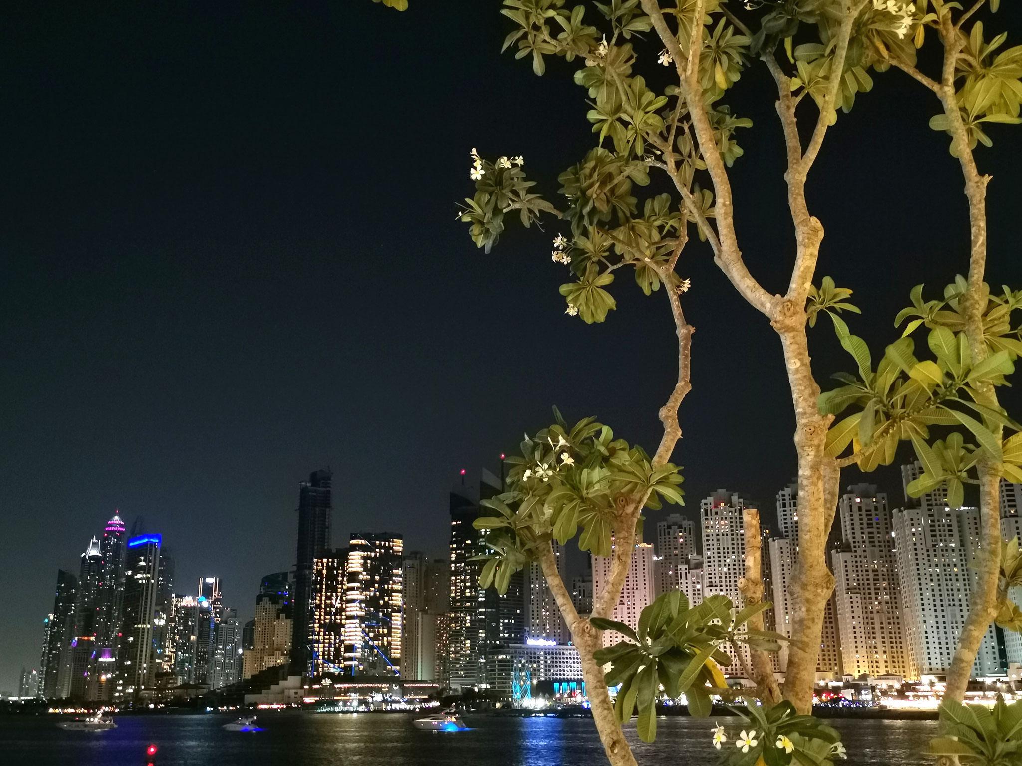 Blick auf JBR bei Nacht
