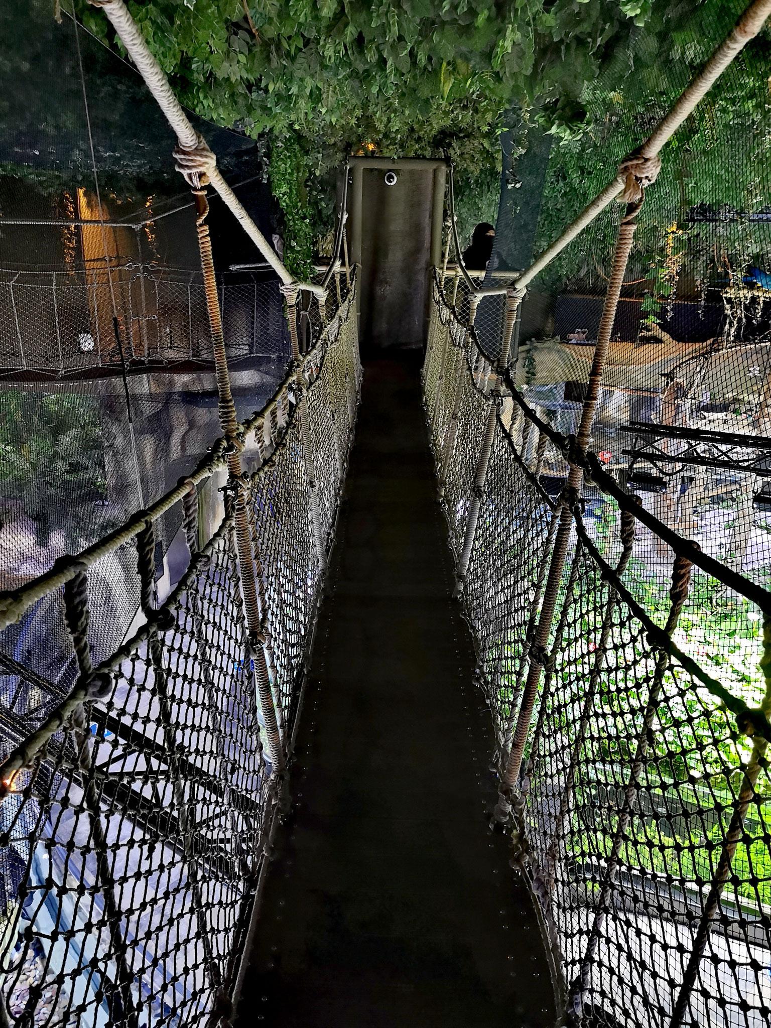 Der Zoo ist thematisch dem Regenwald nachempfunden
