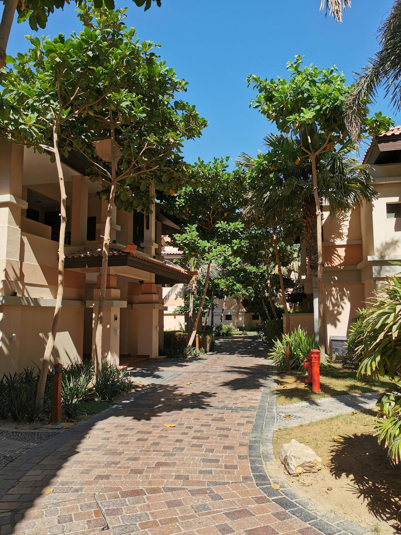 Ein Blick in die wunderschöne grüne Anlage des Resorts