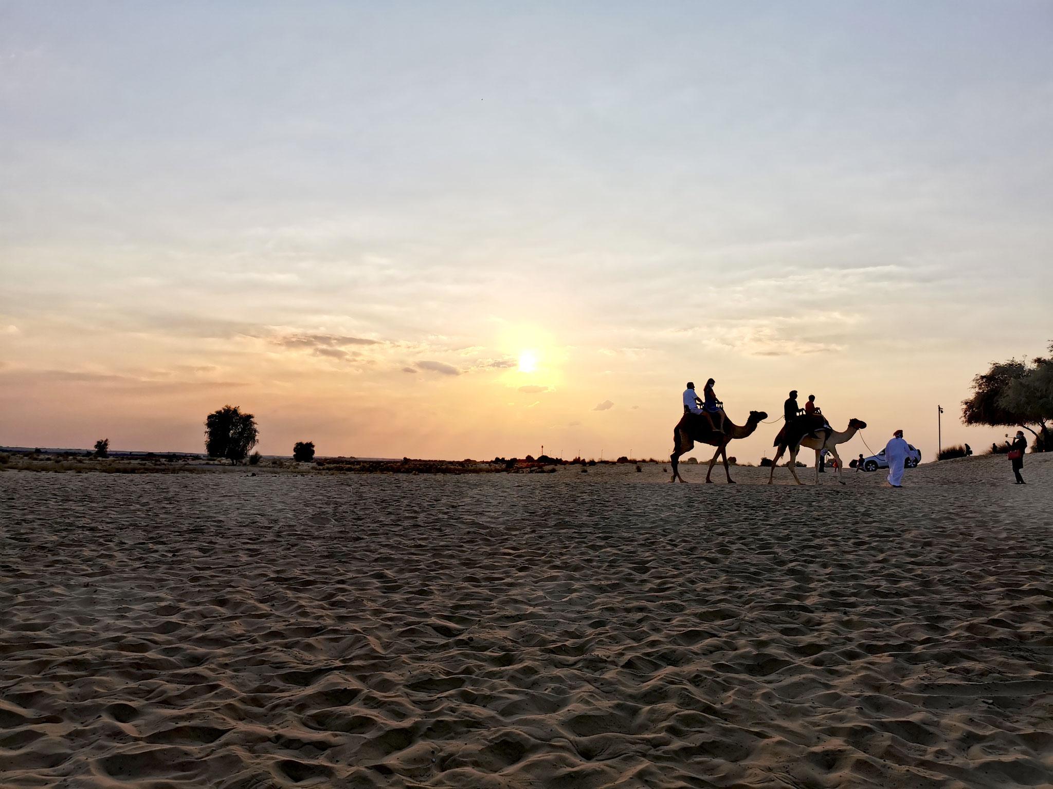 Ein atemberaubender Sonnenuntergang in der Wüste