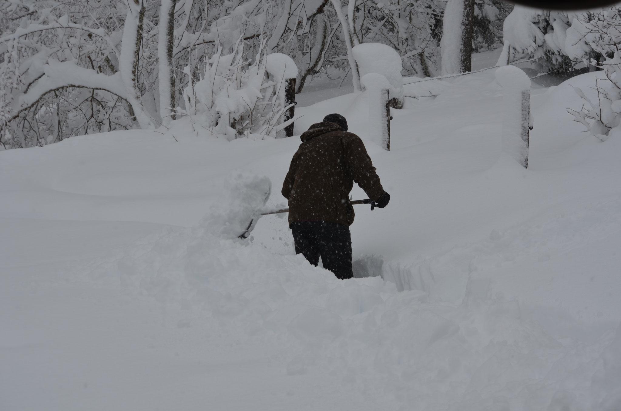 Täglich mindestens 2 x Schneeschaufeln