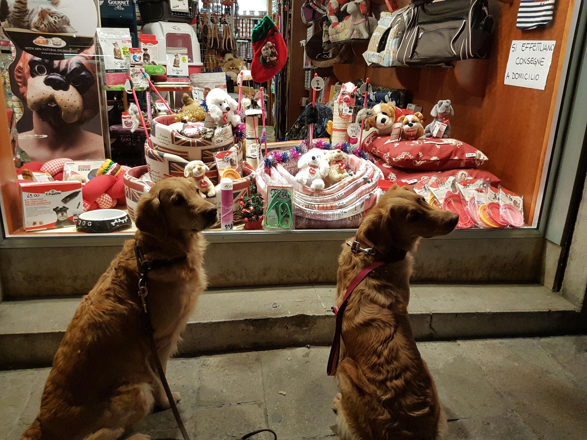 Auch für Hunde gabs Geschäfte