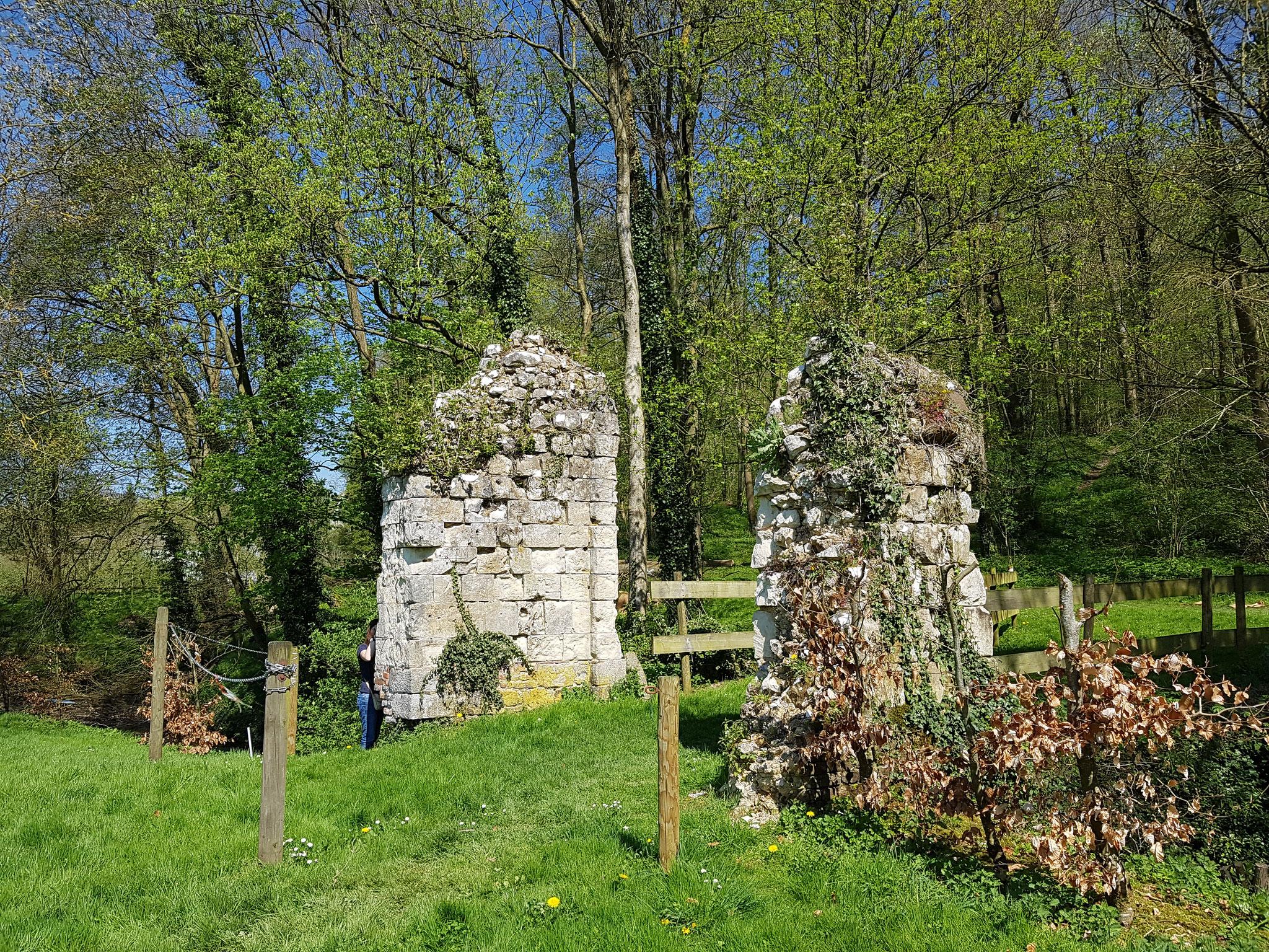 Vestiges du château de Fieffes-Montrelet