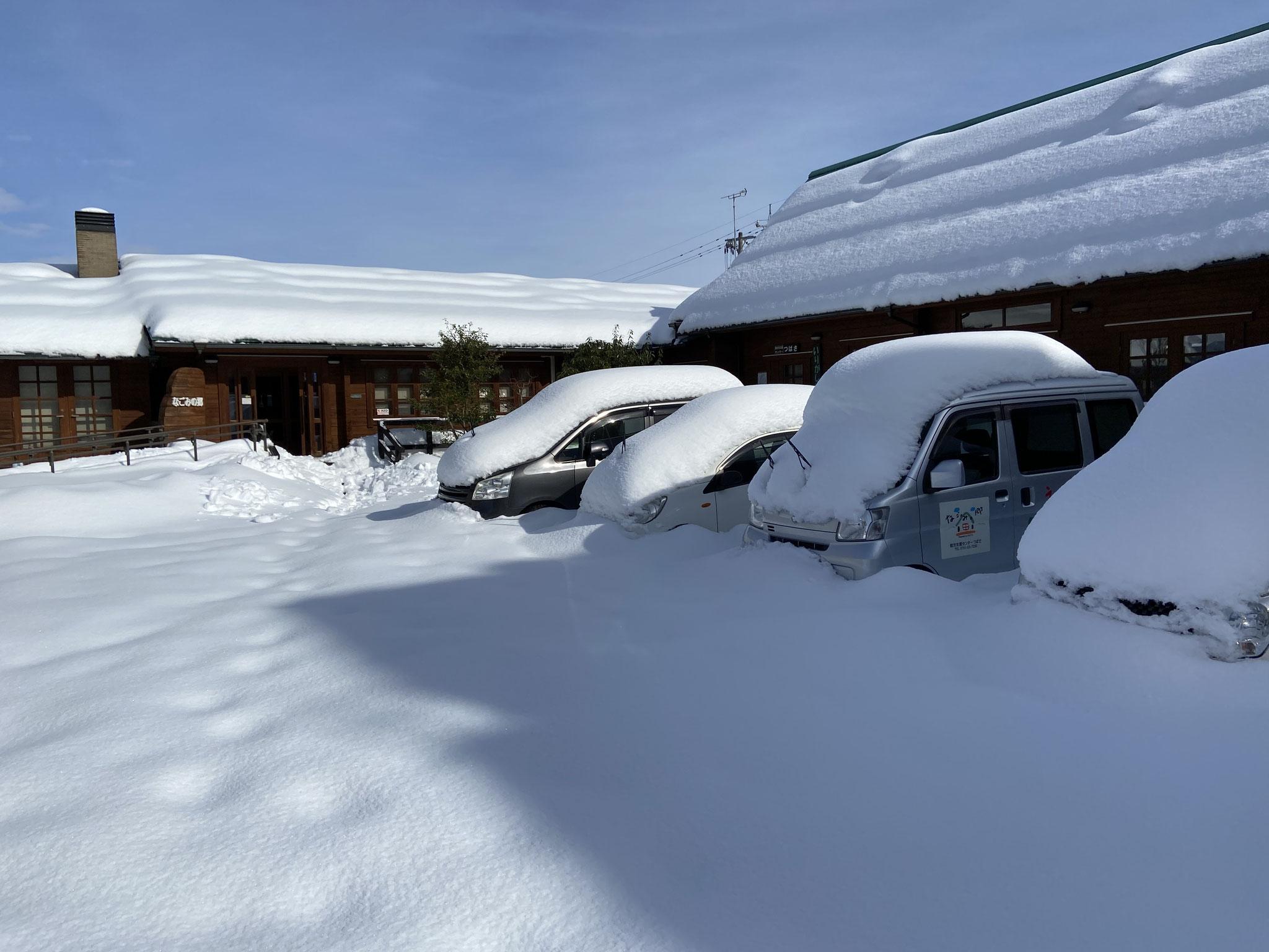 雪で埋もれている