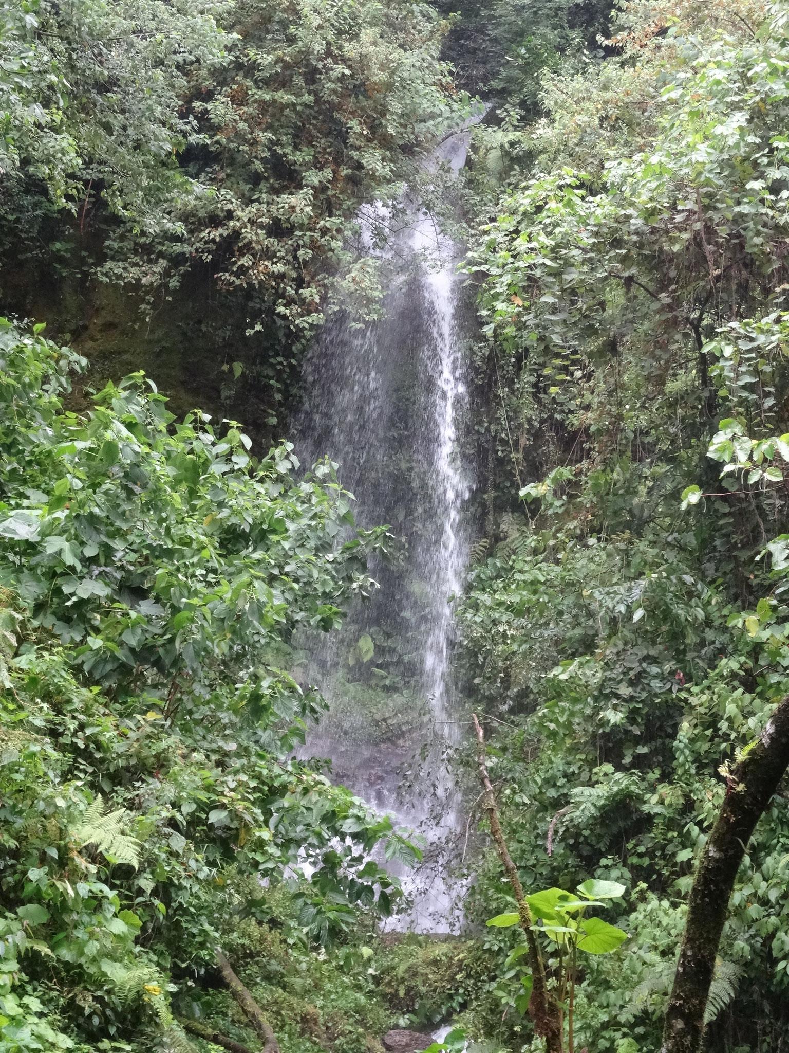 la 1ra cascada de SEMUK / der 1. Wasserfall von SEMUK