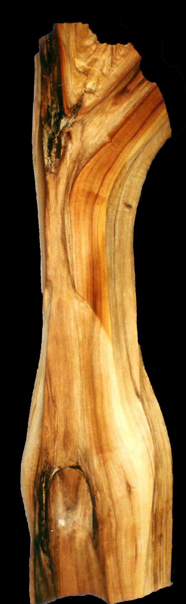 Torso, Apfelbaum  75 cm.
