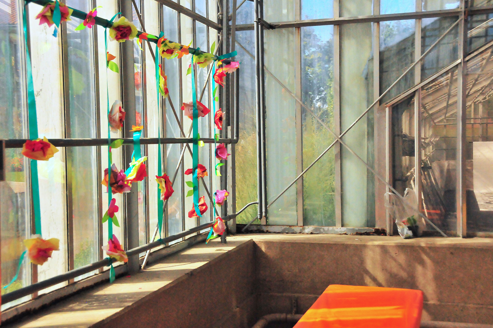 Creative Glasshouse
