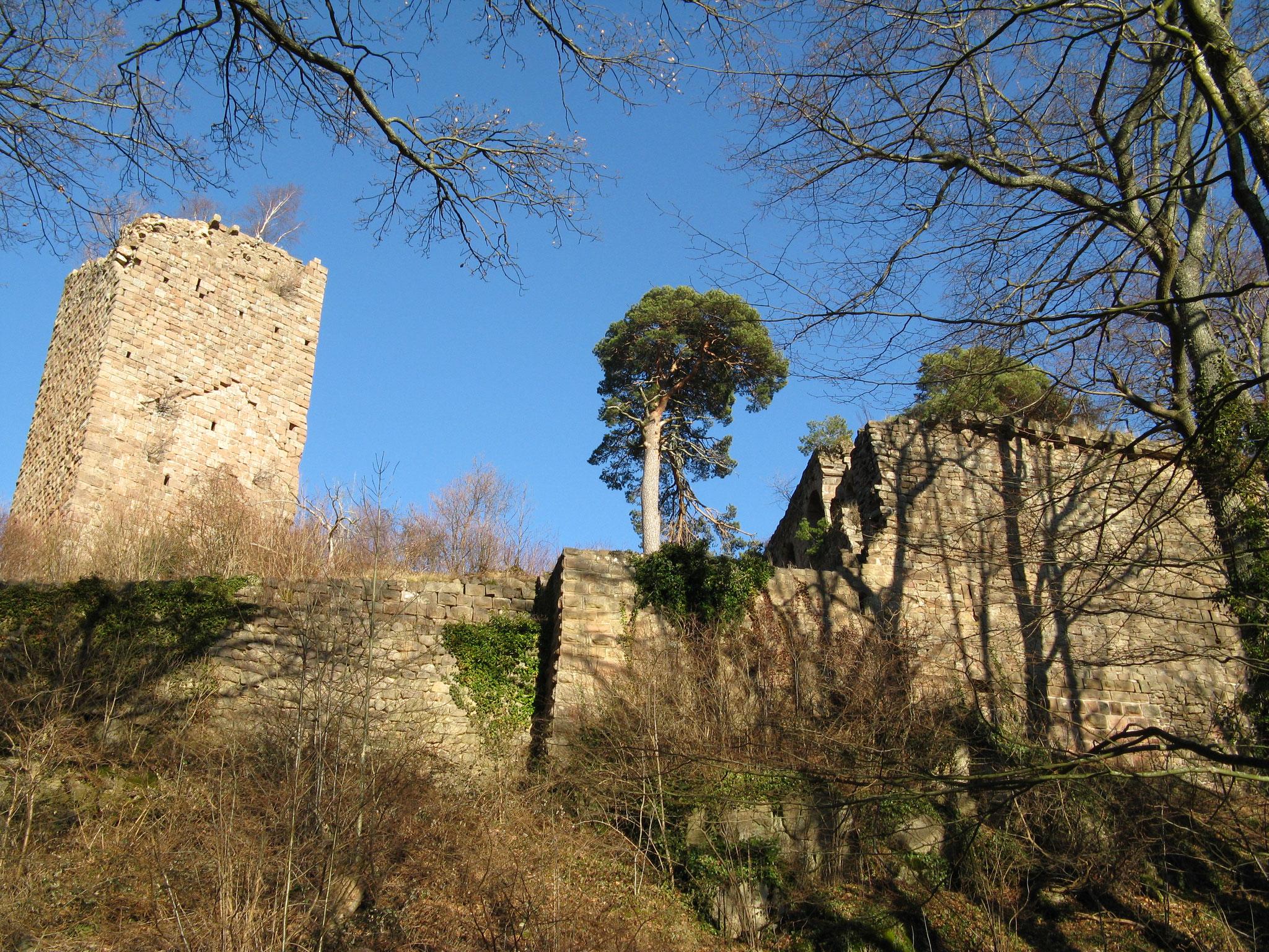 chateau du Landsberg