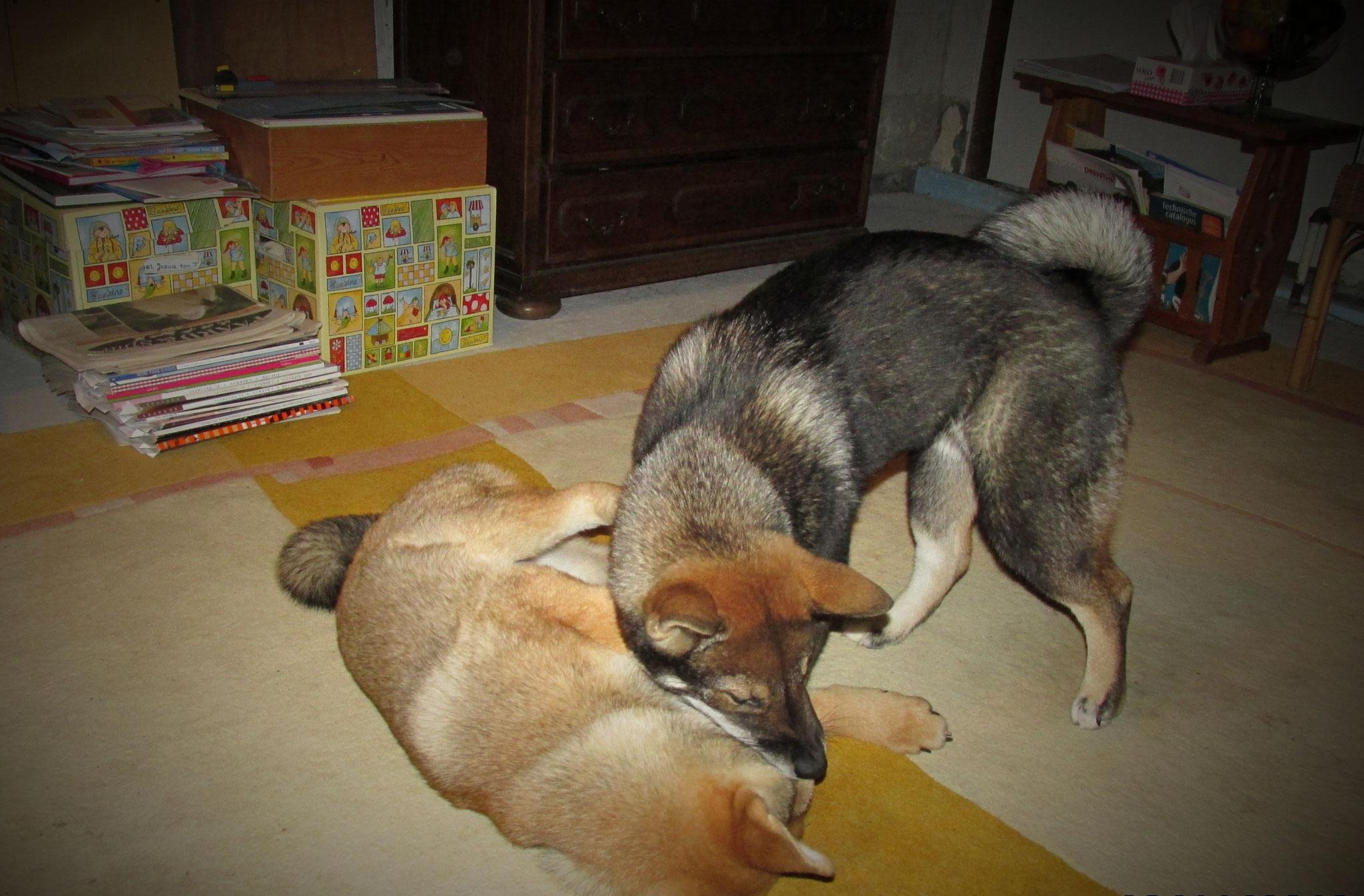 Ichiro und Natsumi