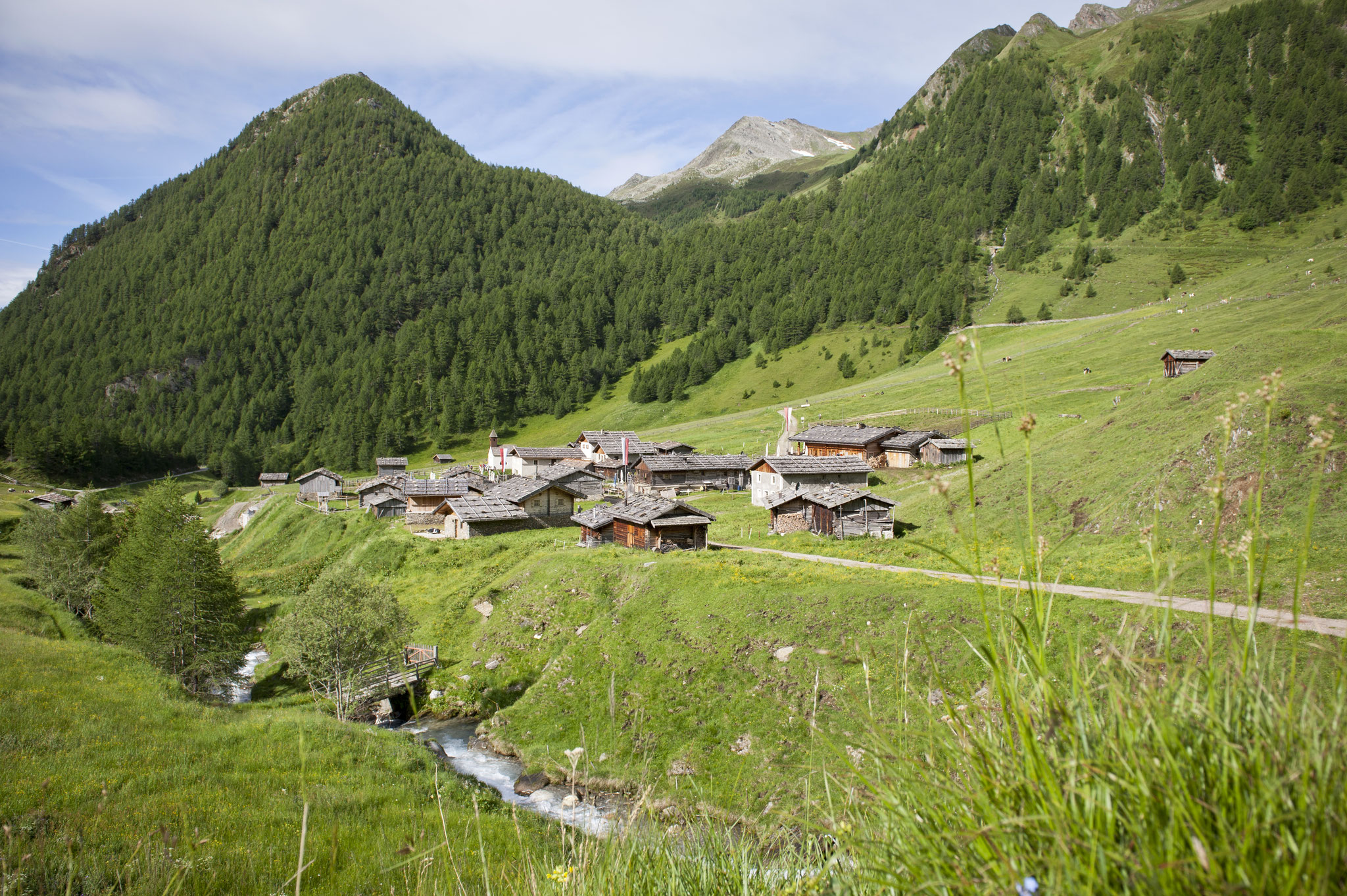 Fanealm in Vals - Südtirol