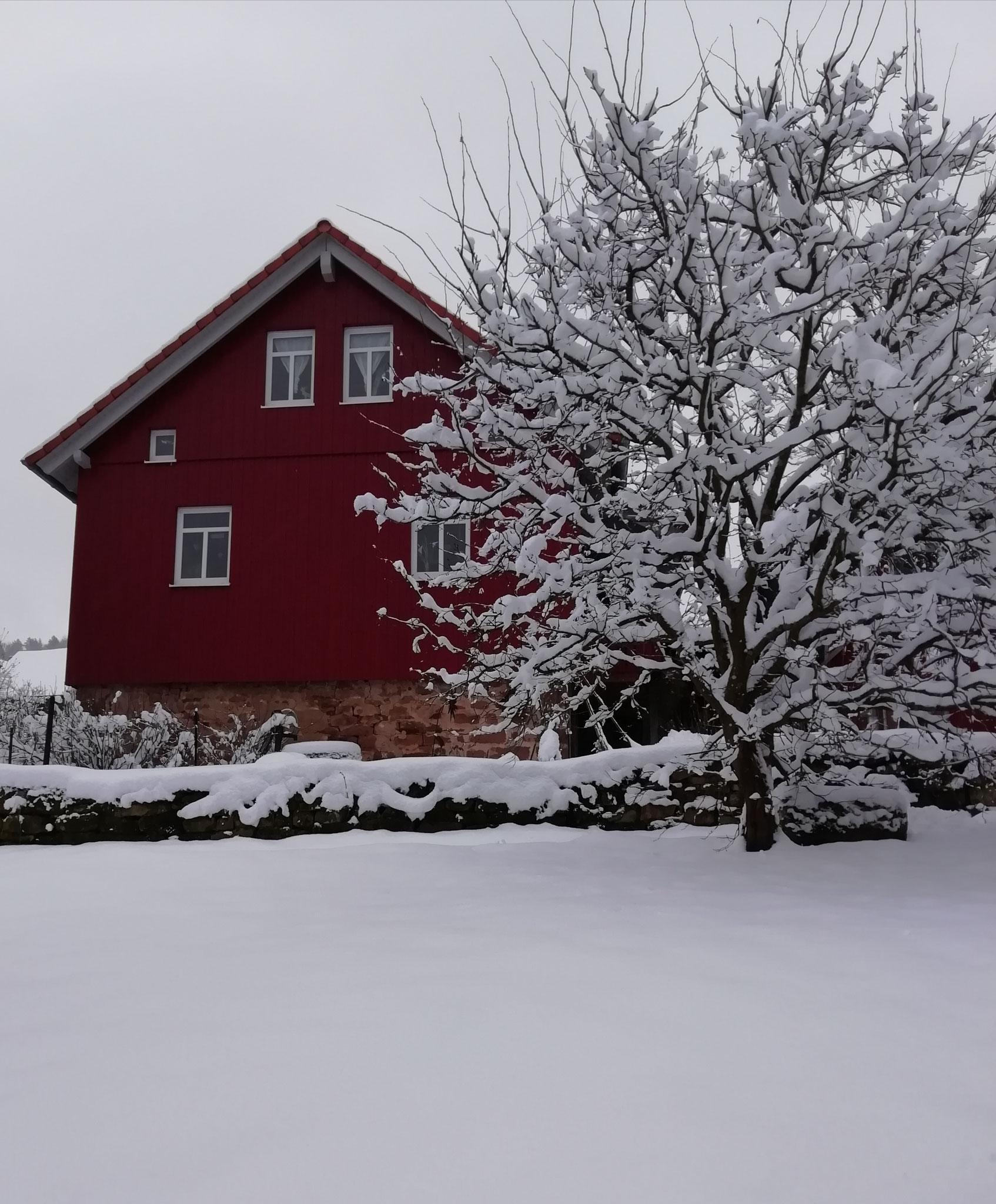 Schnee satt
