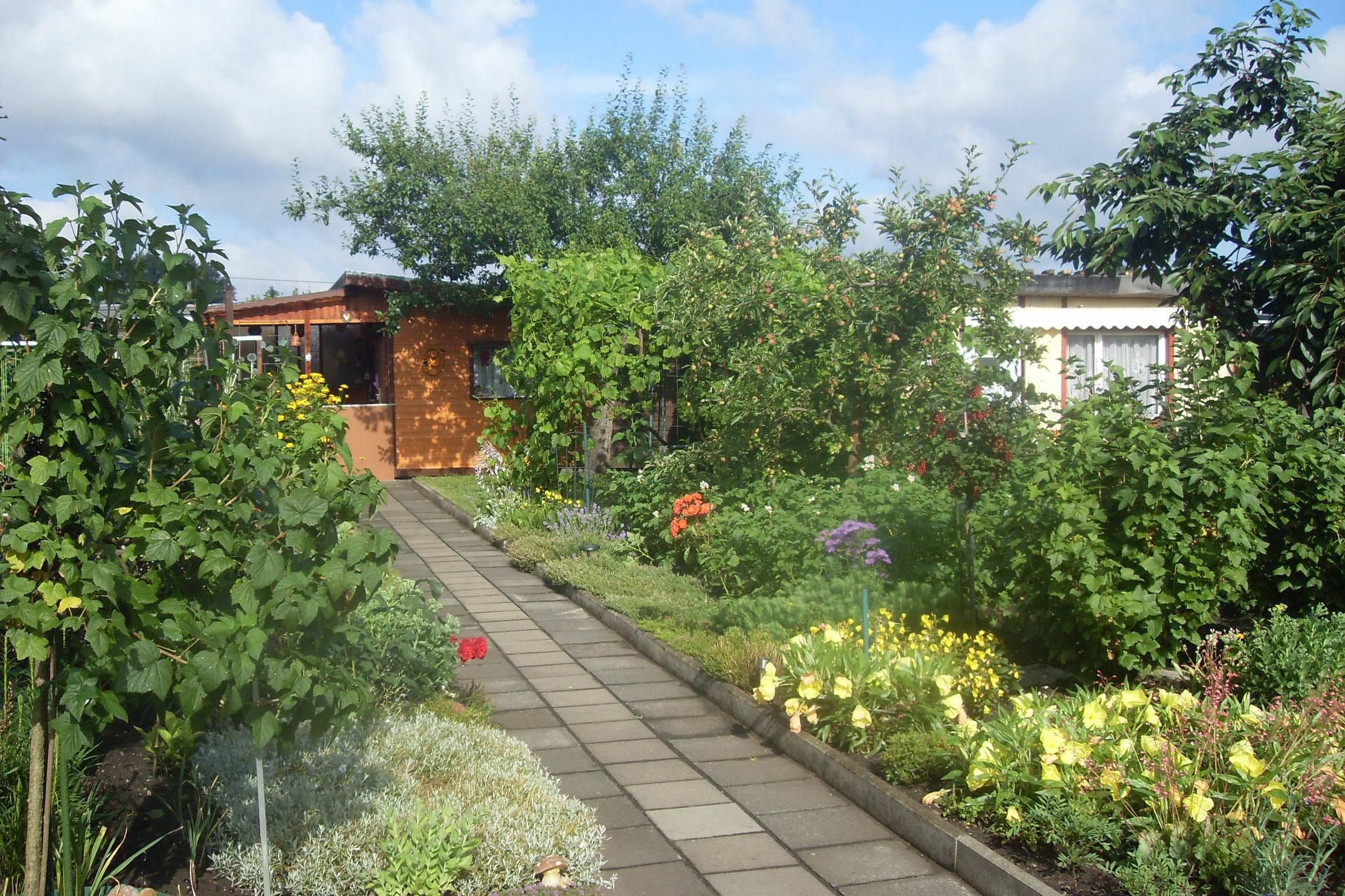 Garten 2016-14