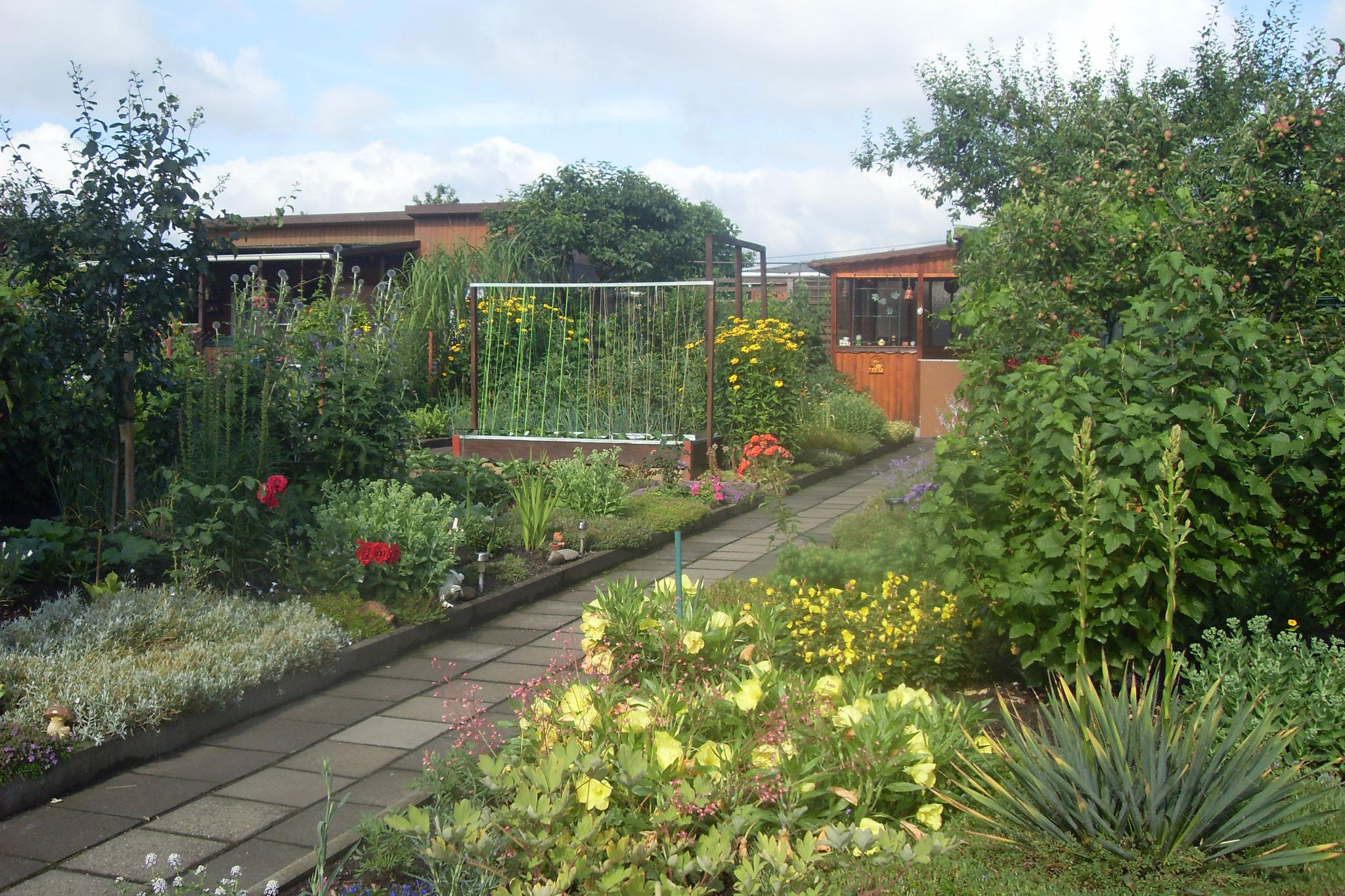 Garten 2016-10