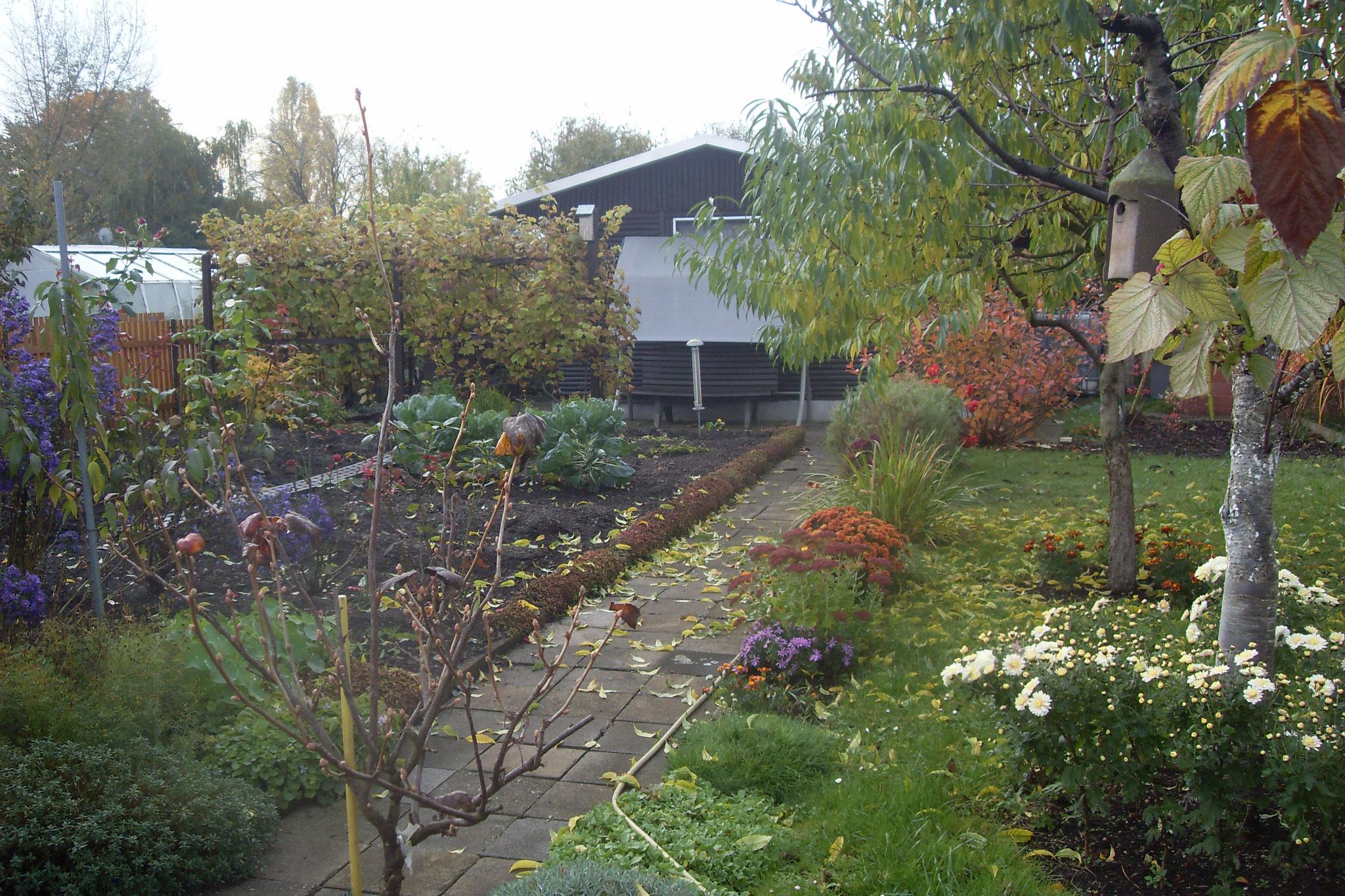 Garten 2016-20