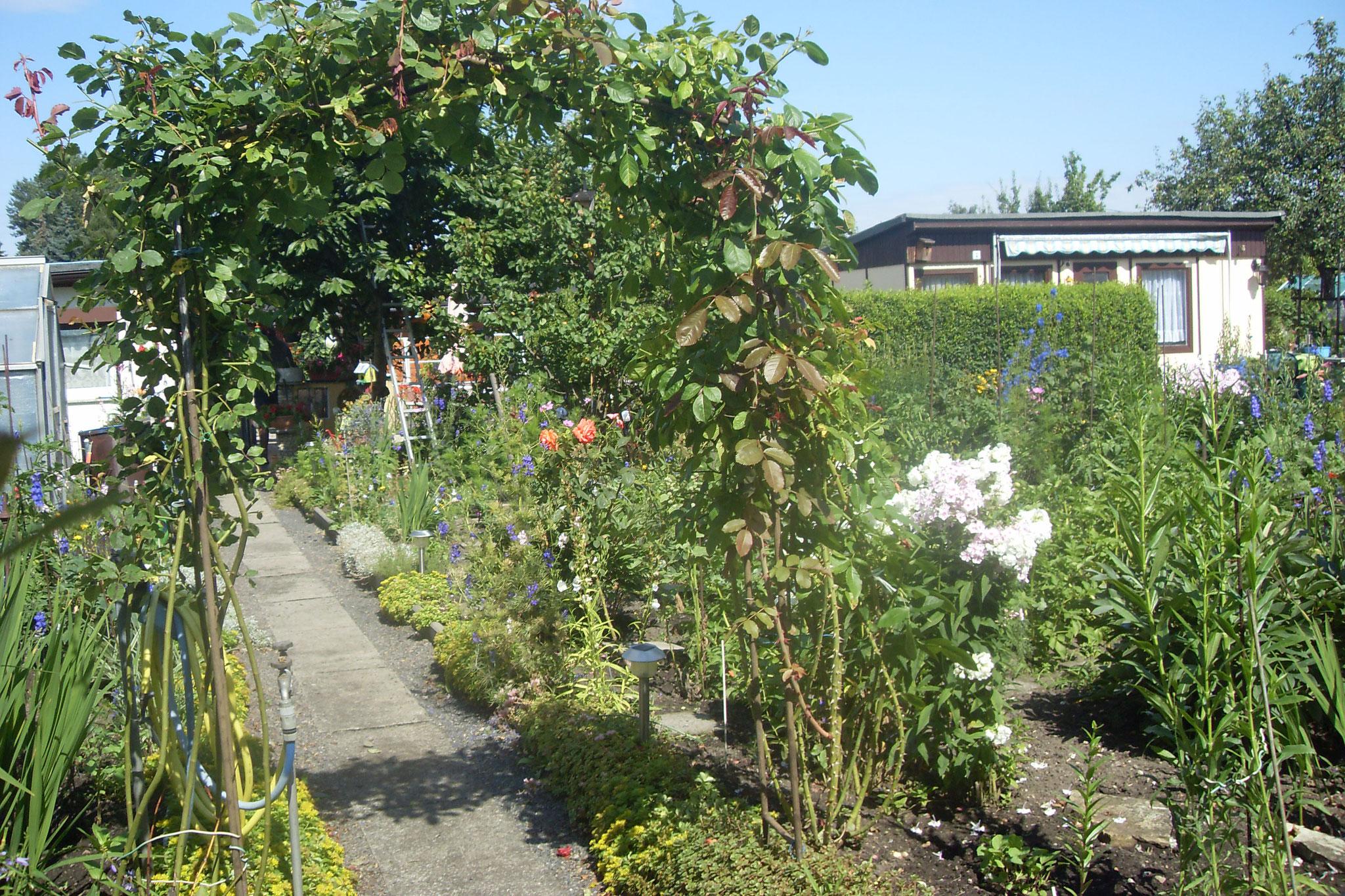 Garten 2016-23