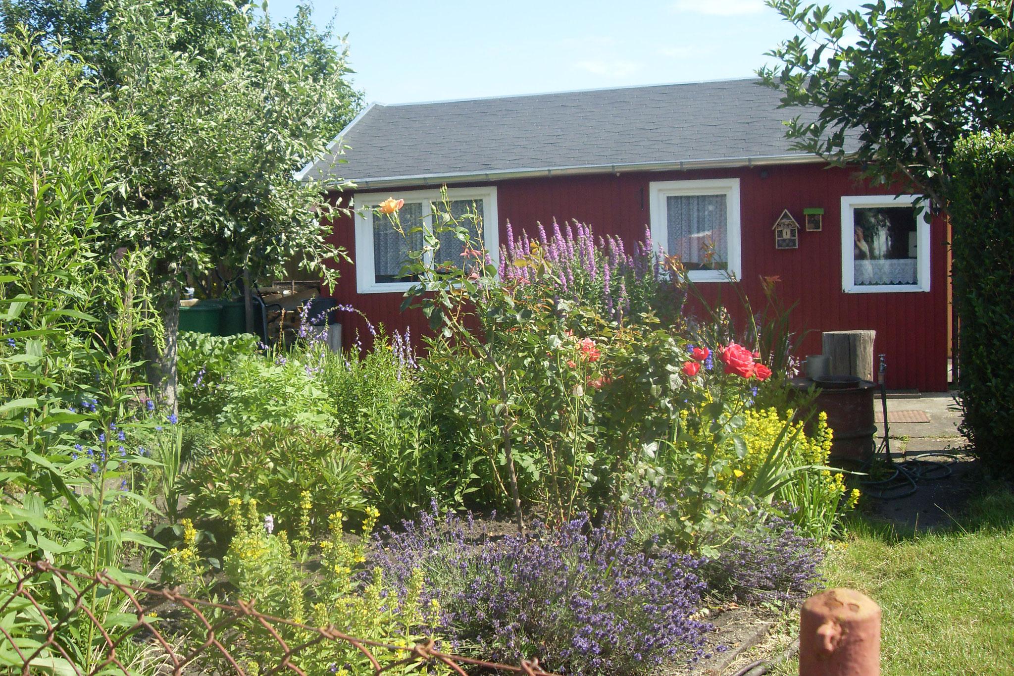 Garten 2016-26