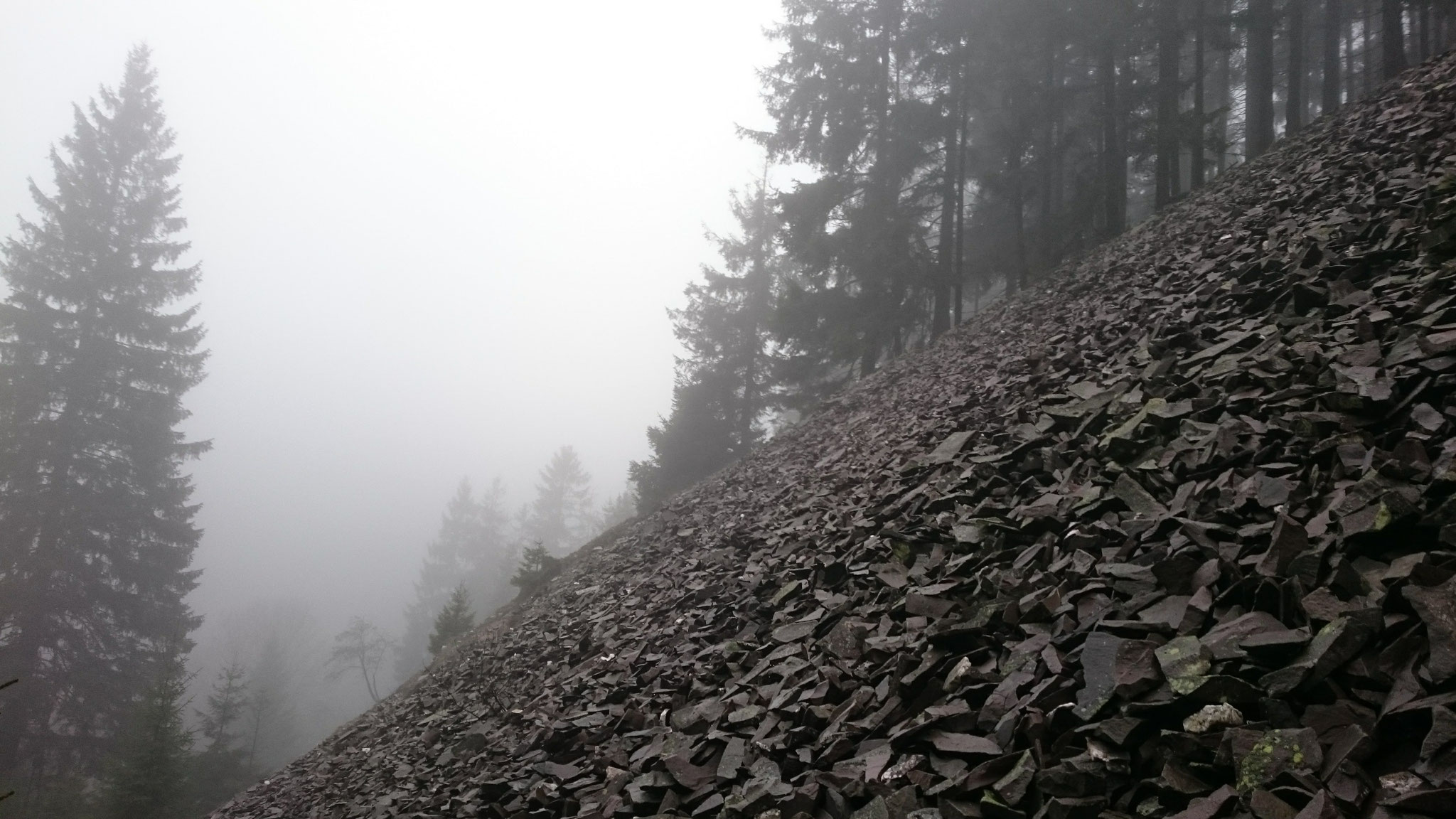 November - Nebelwanderung im Schiefergebirge