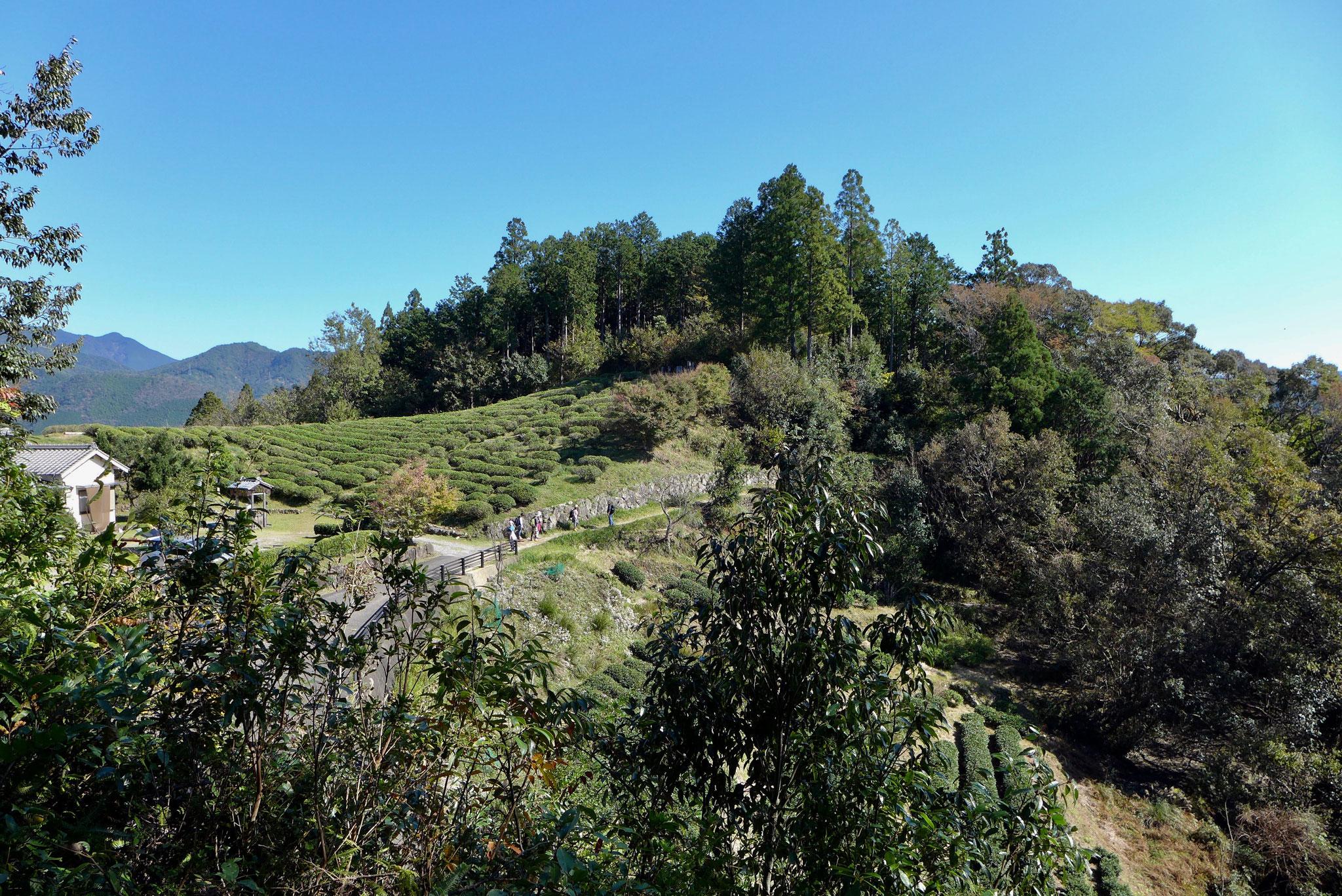 Kumano Kodo Weg zum Aussichtspunkt auf das Schreintor von Hongu