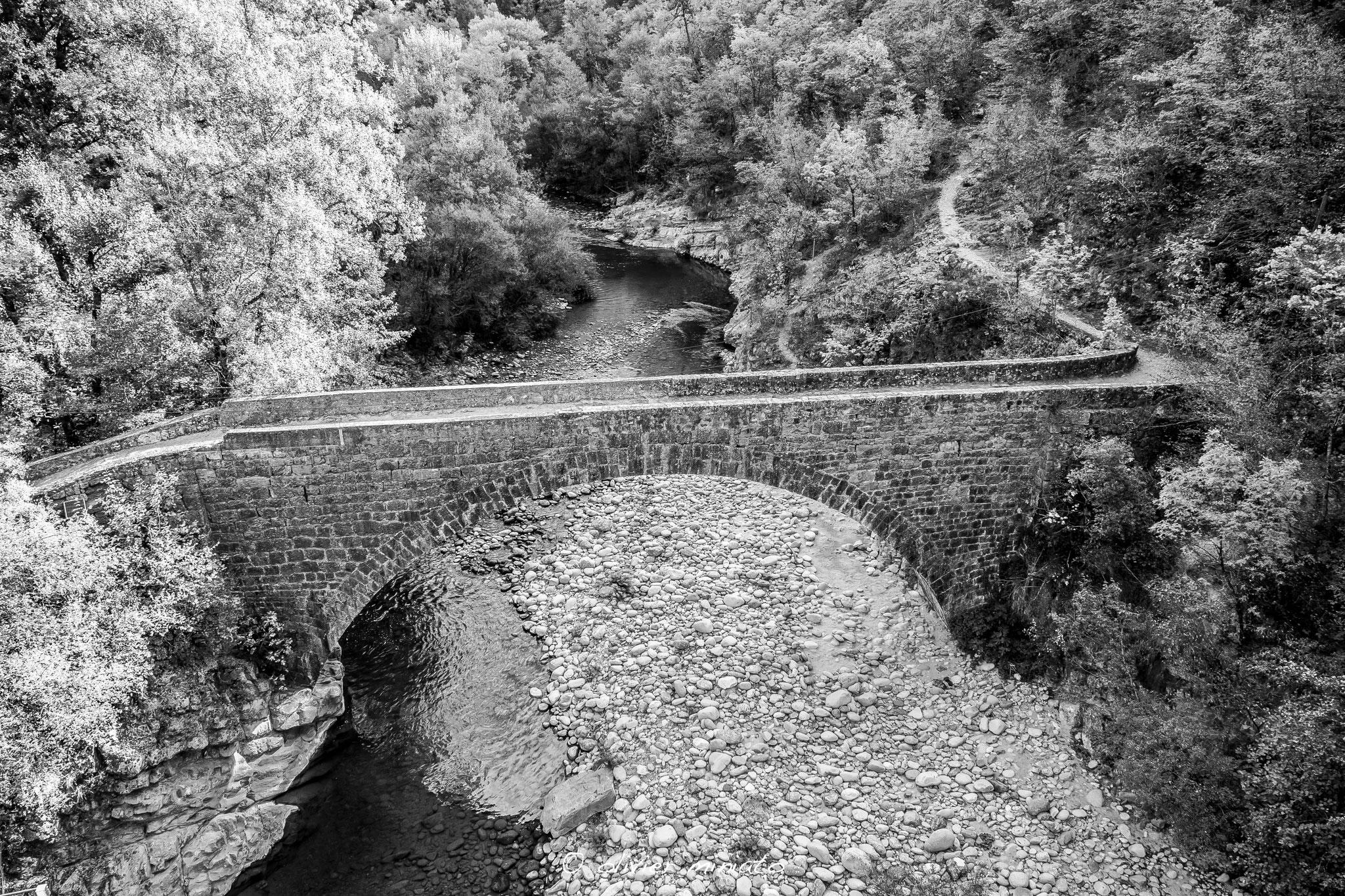 Old bridge © Olivier Miniato