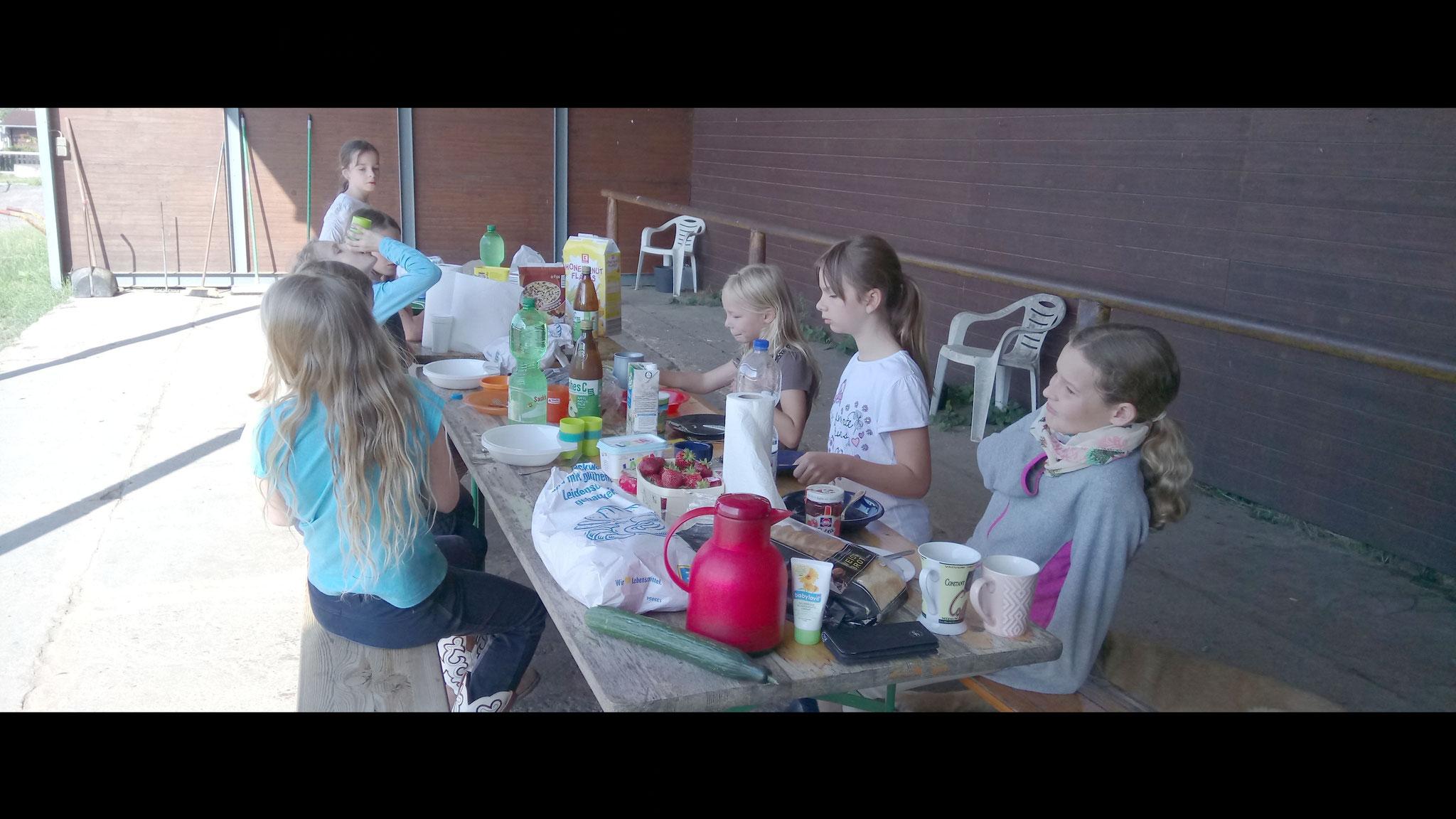 Kinderreitferien im Sommer 2017
