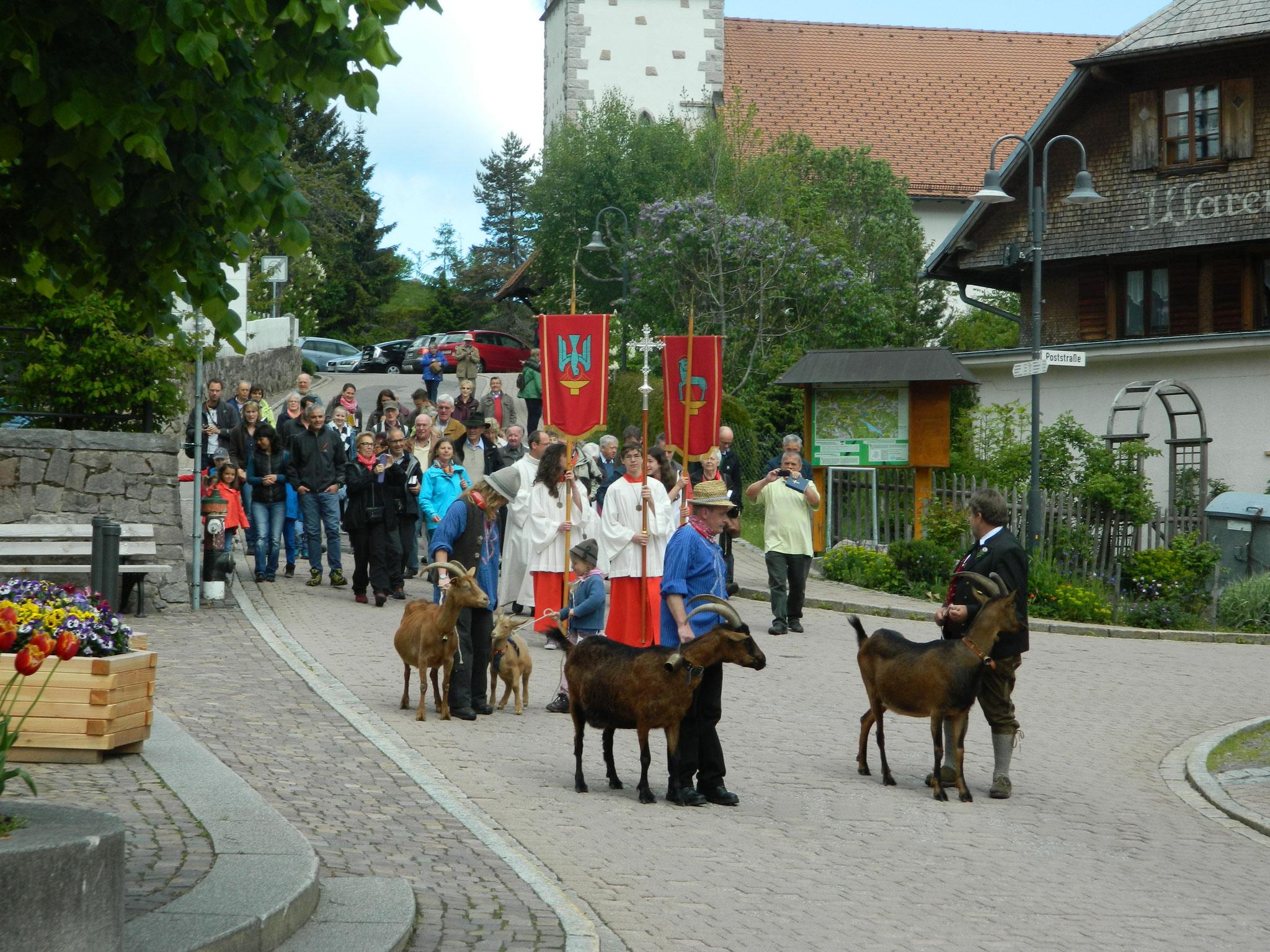 Prozession von der Kirche bis zum Geißenhof mit Segnung der Herde