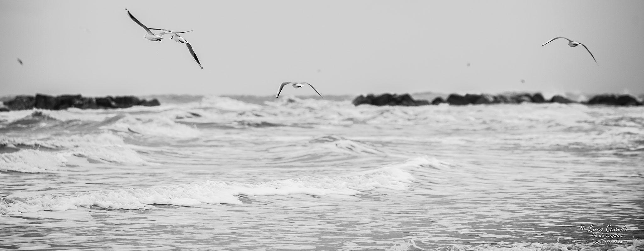 """La Voce Del Mare (San Benedetto del Tronto), concept ispirato dal film """"La leggenda del pianista sull'oceano"""" del maestro Giuseppe Tornatore. © Luca Cameli Photographer"""