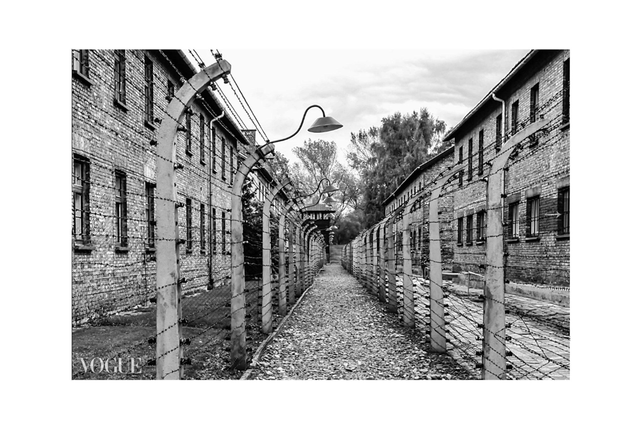"""""""Il silenzio dopo l'inferno"""", Per Non Dimenticare: Auschwitz. 27 Gennaio - Giorno Della Memoria ~ PhotoVogue Italia by VOGUE"""