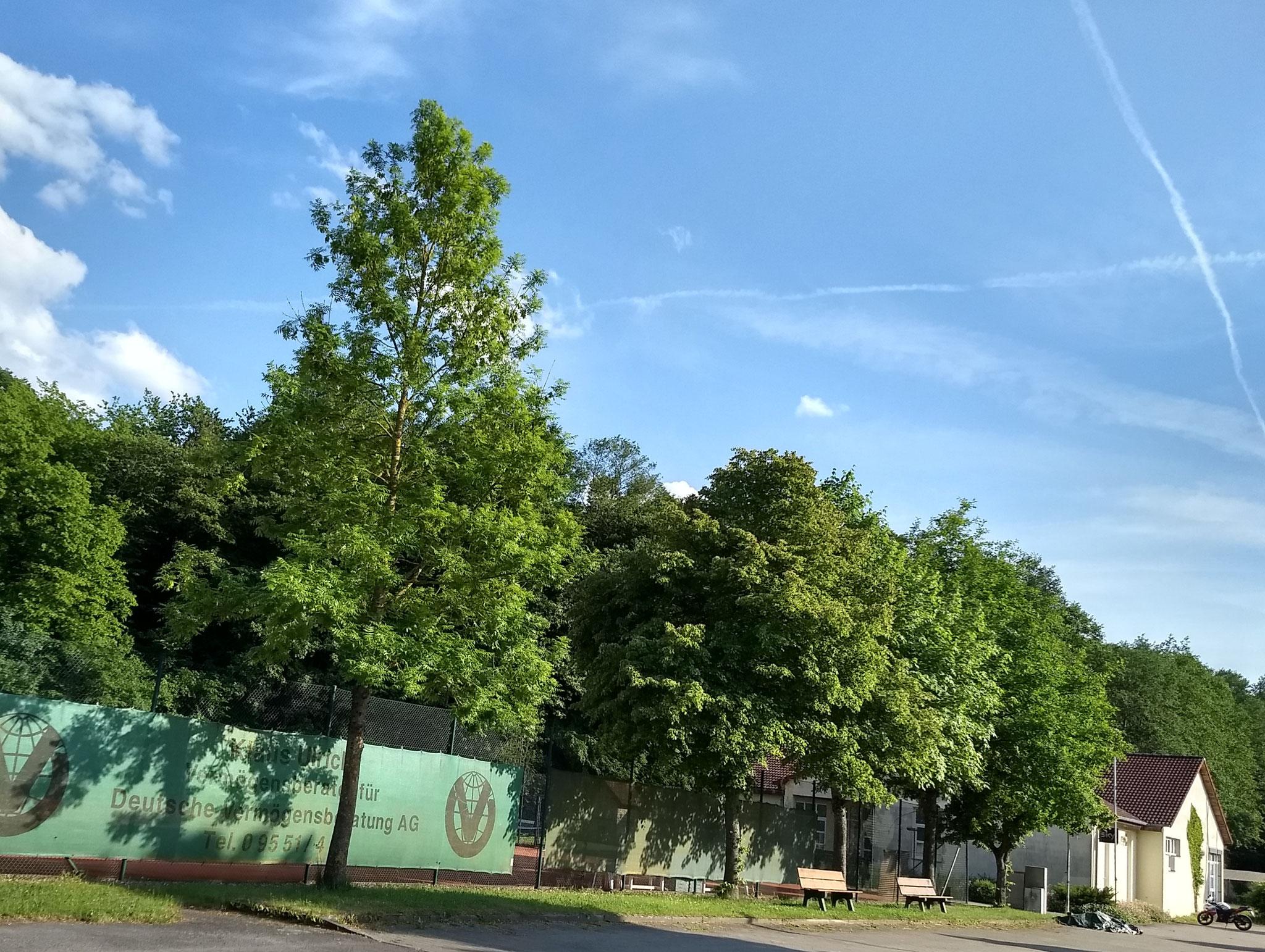 Sportclub Ebrach Vereinsheim mit Tennisanlagen und Parkplätzen von Nordwesten gesehen