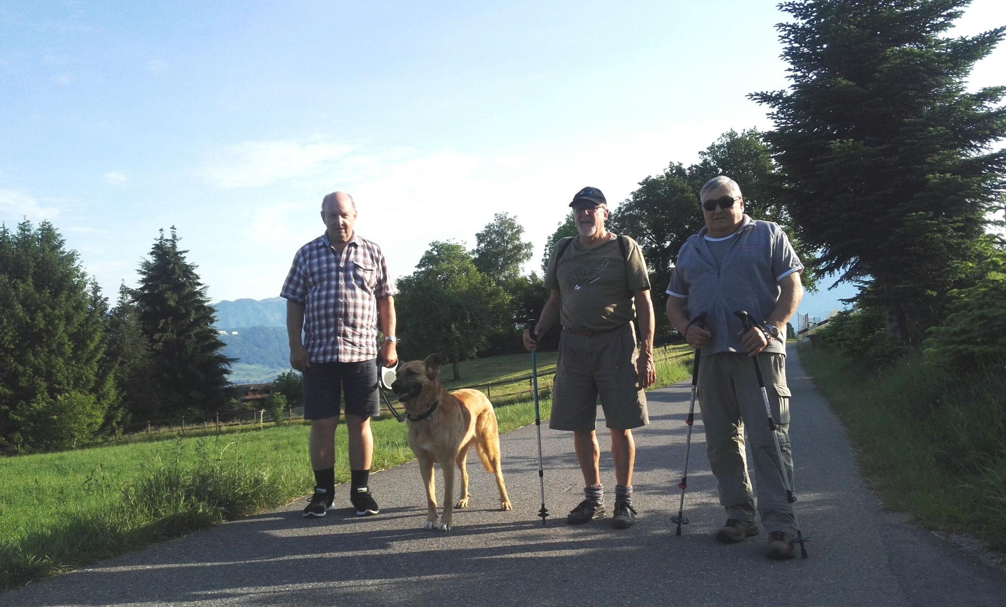 4 Turner mit Hundebegleitung