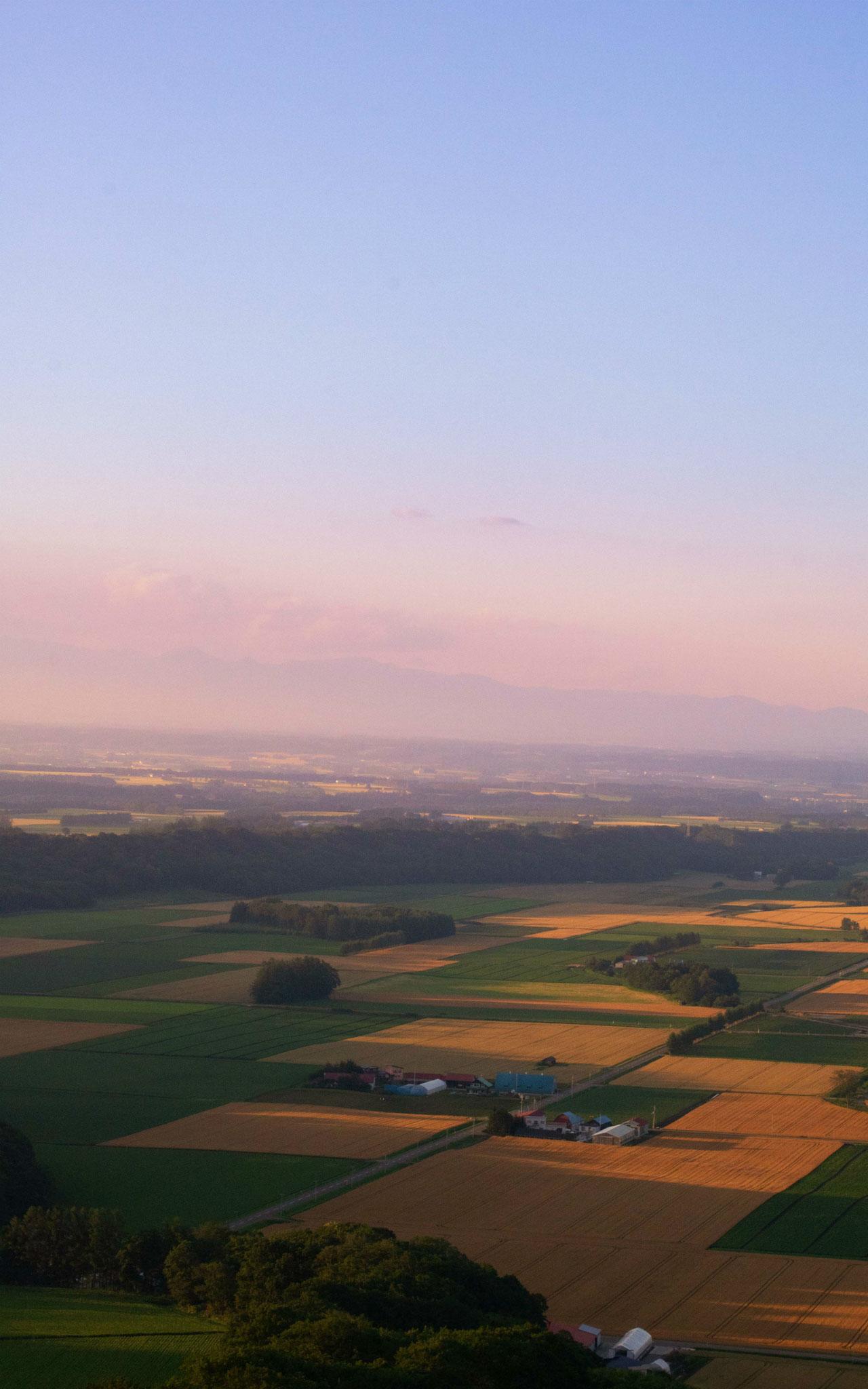 秋のパッチワーク畑